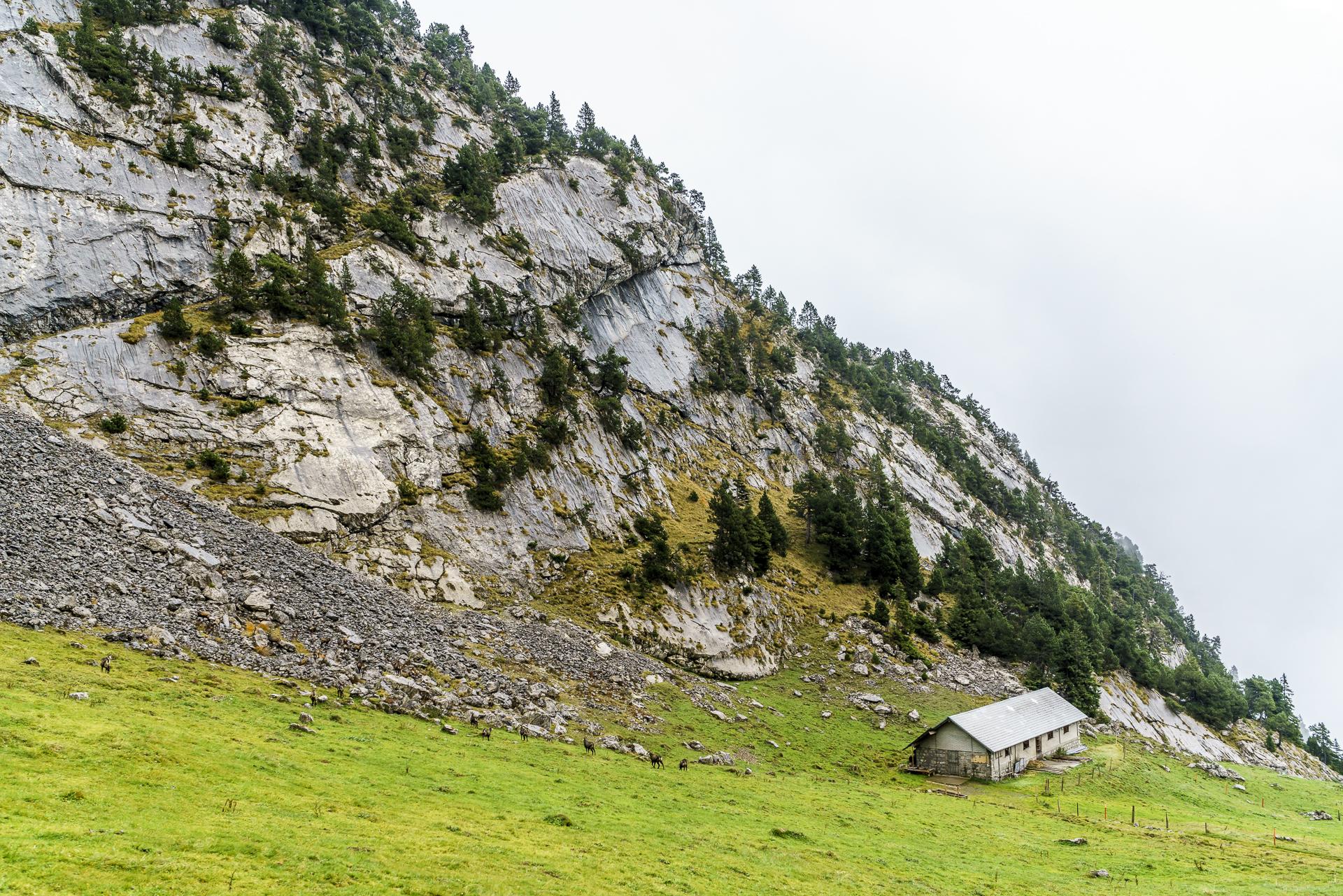 pilatus-zahnradbahn-gaemsen