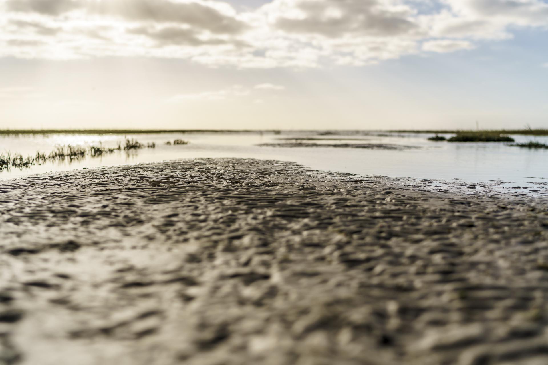 wattenmeer-ostfriesland
