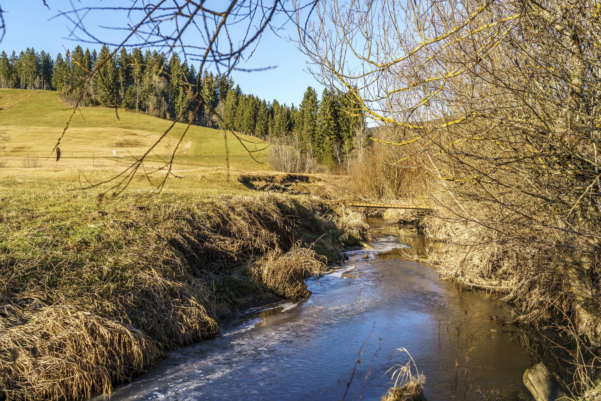 Hochmoor Rothenthurm