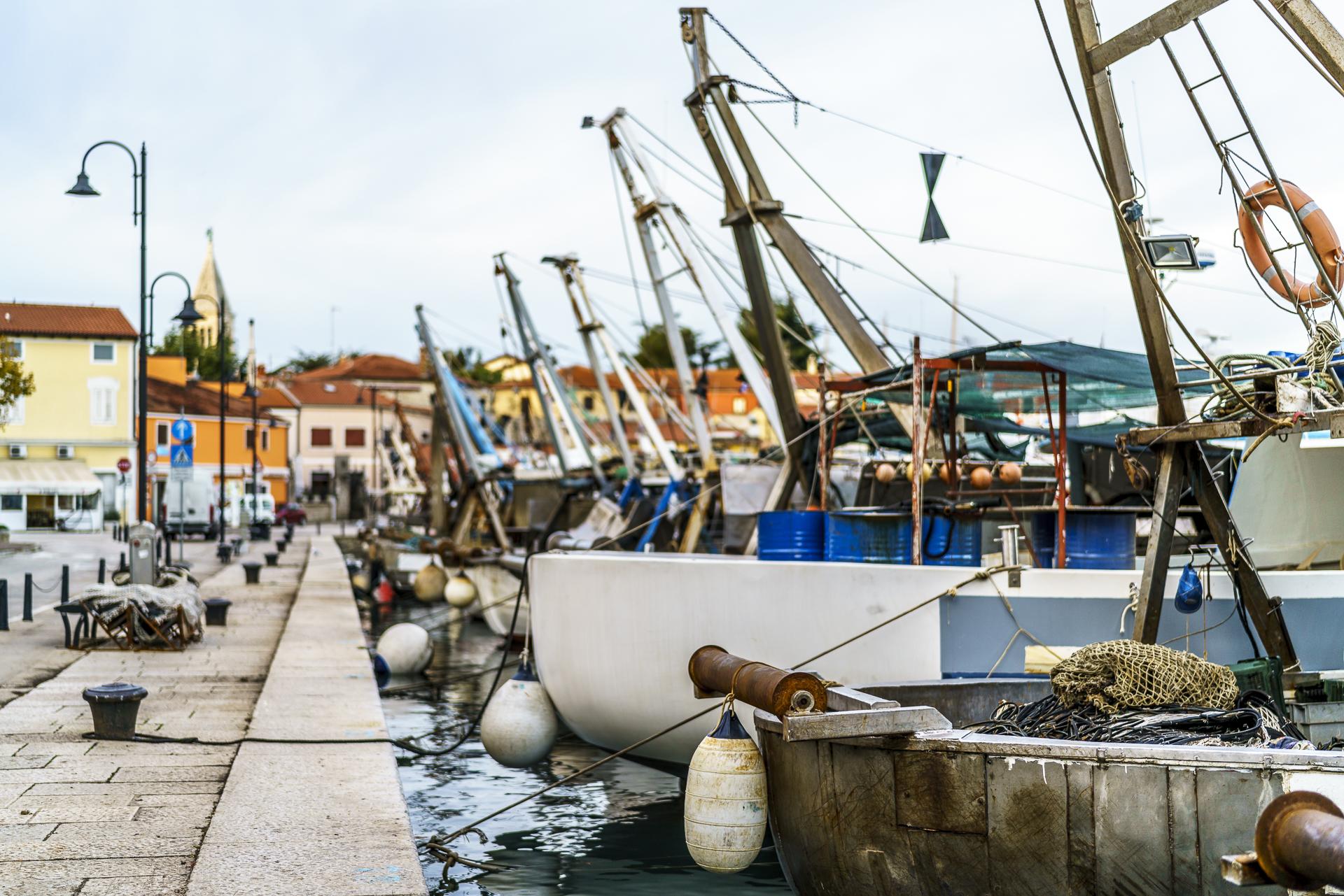 novigrad-fischerboote