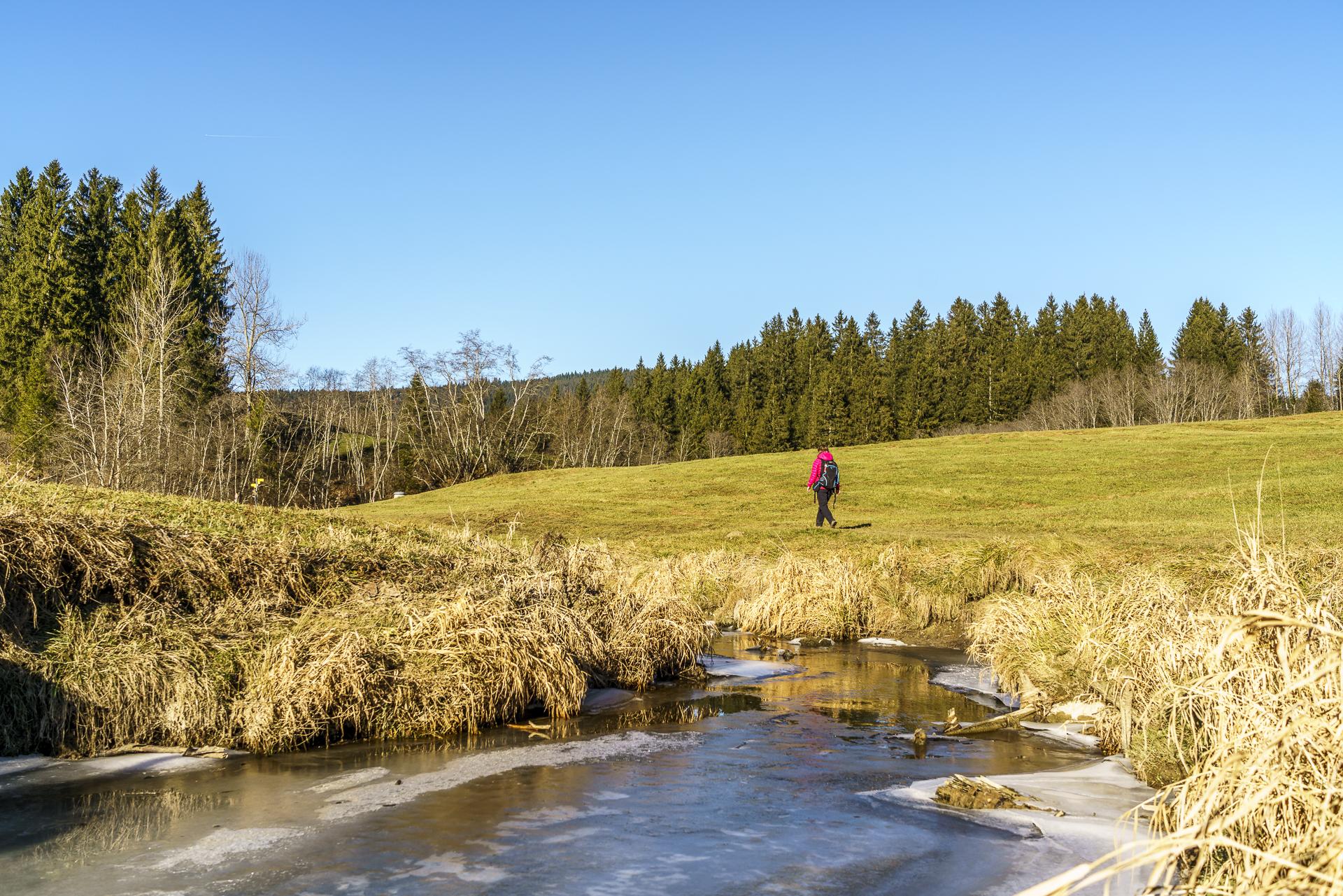 Rothenthurm Moor Wandern