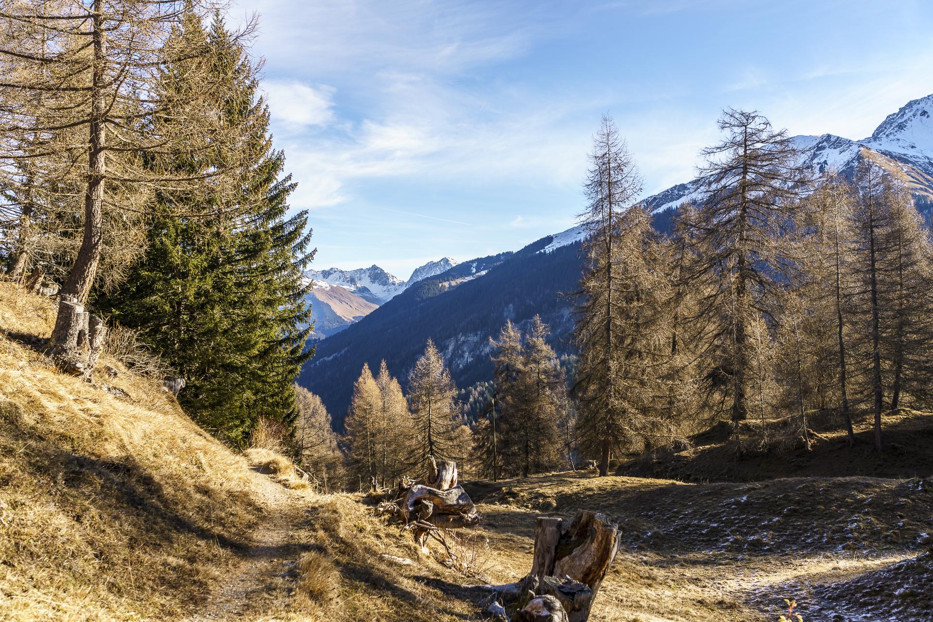 Tschiertschen-Schanfigg-Wandern