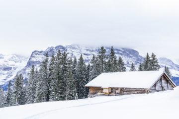 Ferienwohnung statt Hotel? - unser Fazit aus Grindelwald