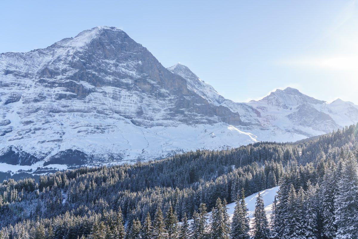 Schneeschuhwanderung Grindelwald – Traumtag am Eiger Trail
