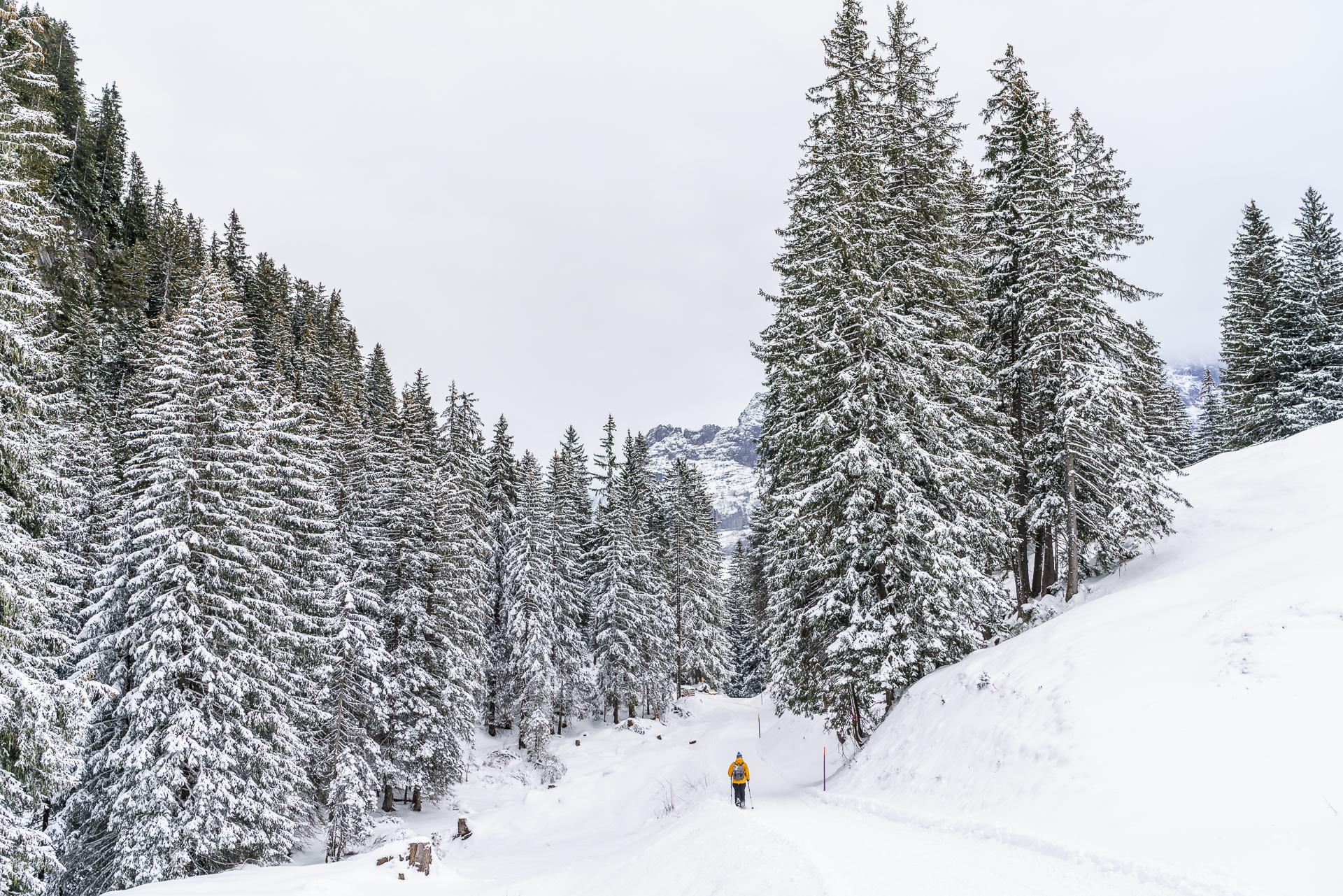 Grindelwald Schneeschuhwandern