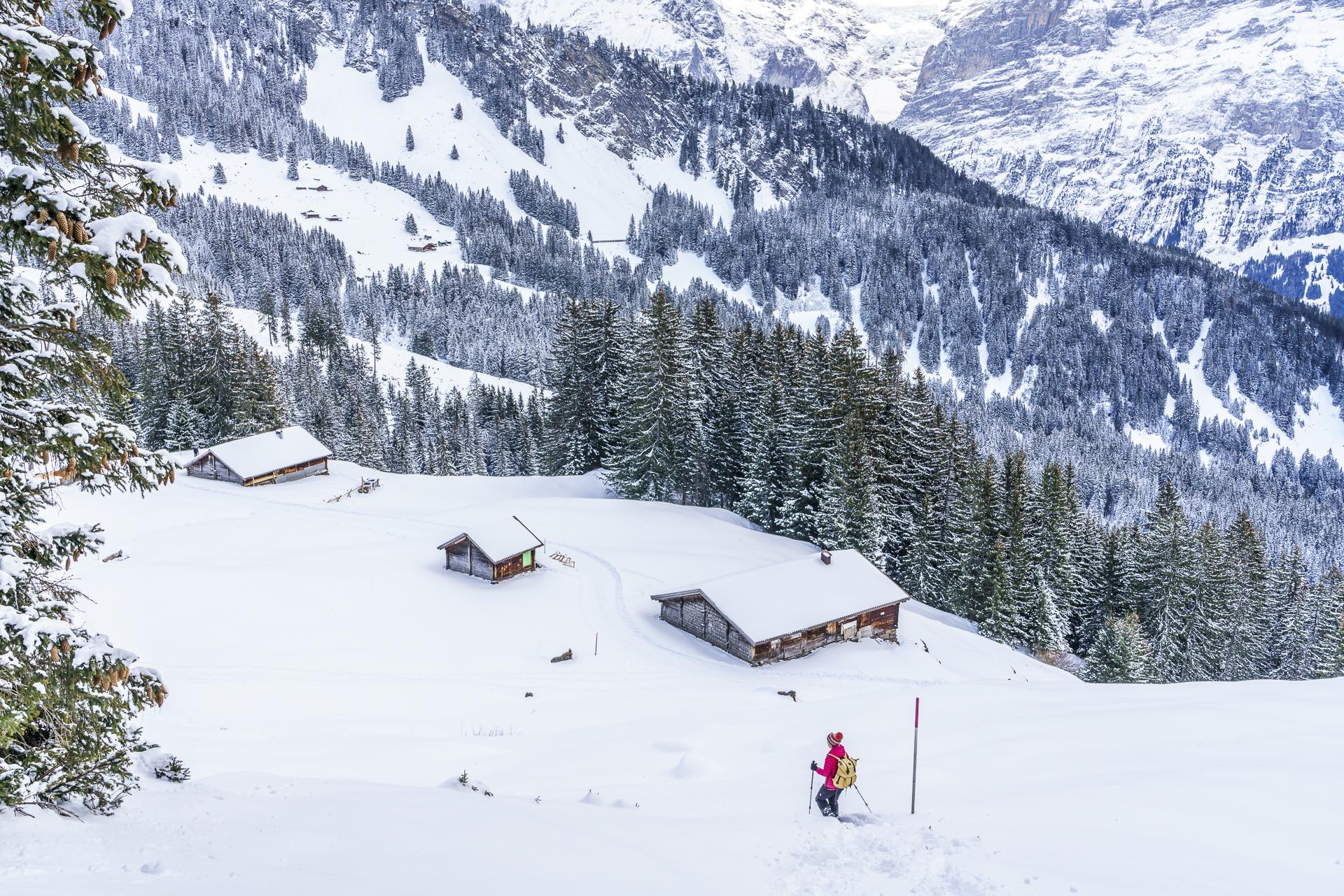 Panoramaschneeschuhtrail Grindelwald