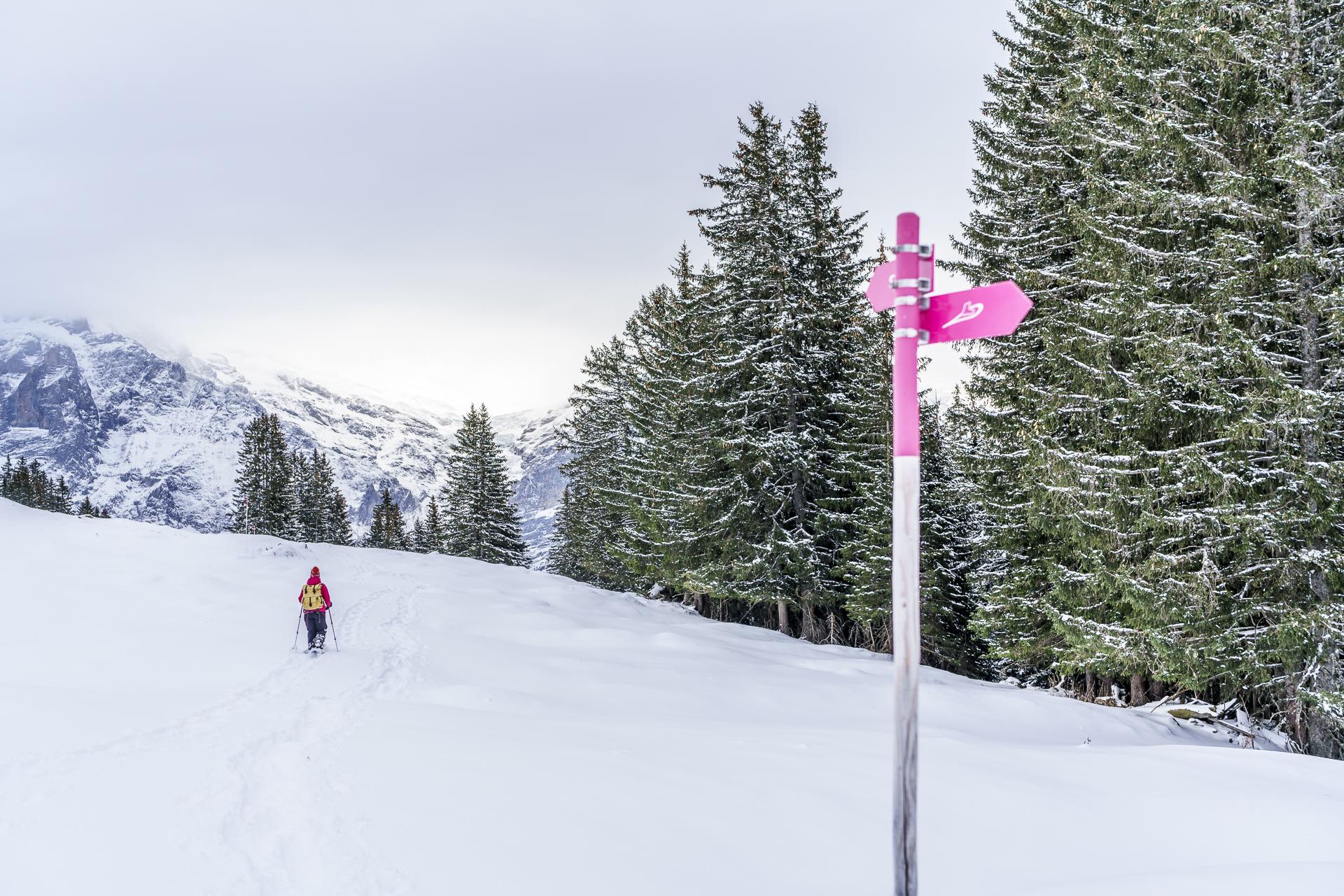 Panoramatrail Grindelwald