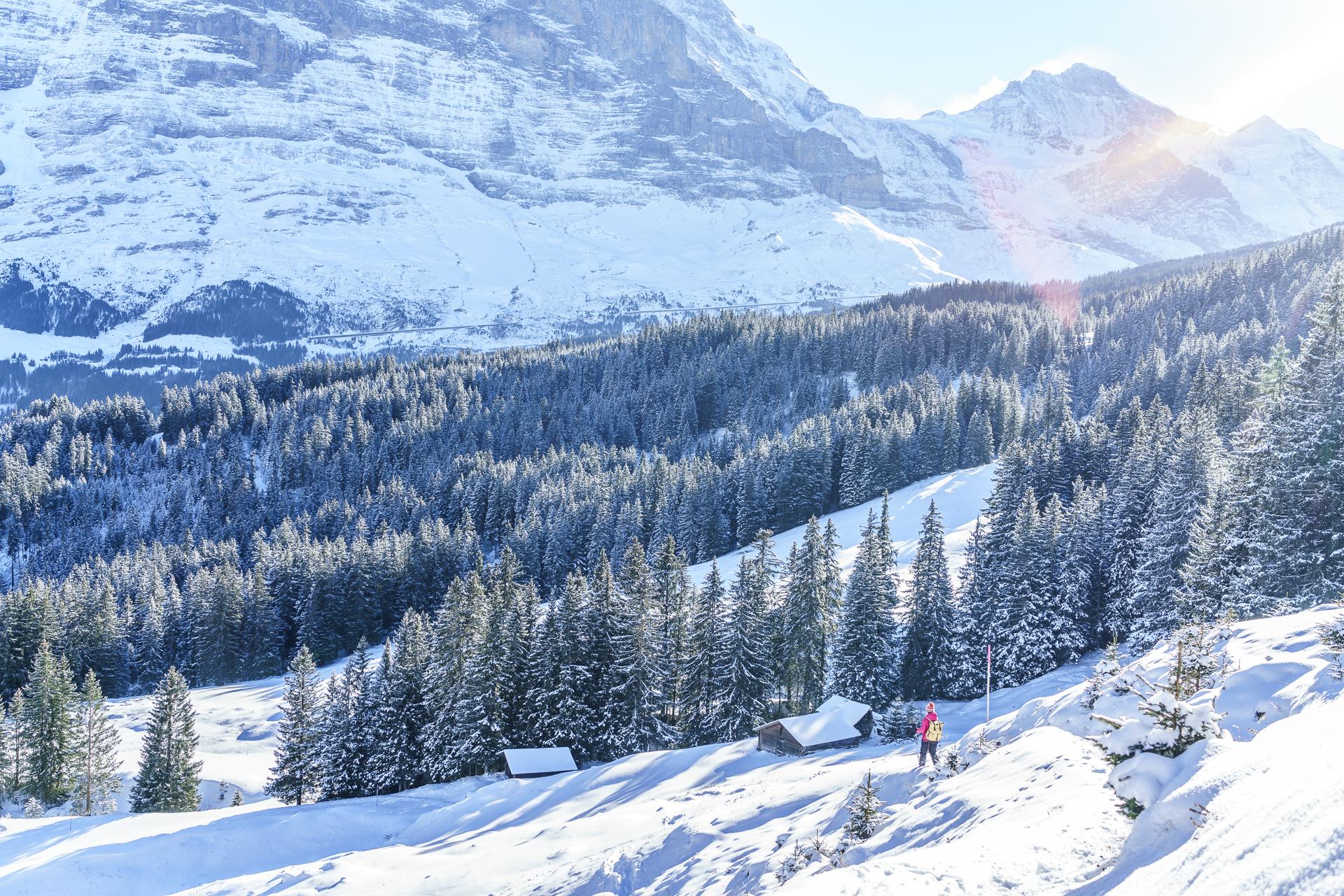 Schneeschuhwanderung Grindelwald Maennlichen