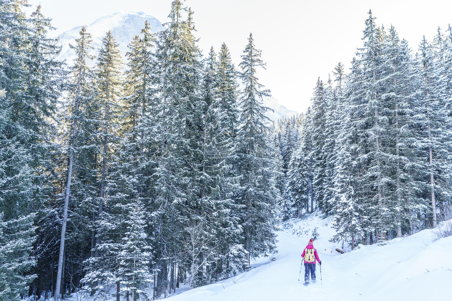 Schneeschuhwanderung Grindelwald Eiger Trail