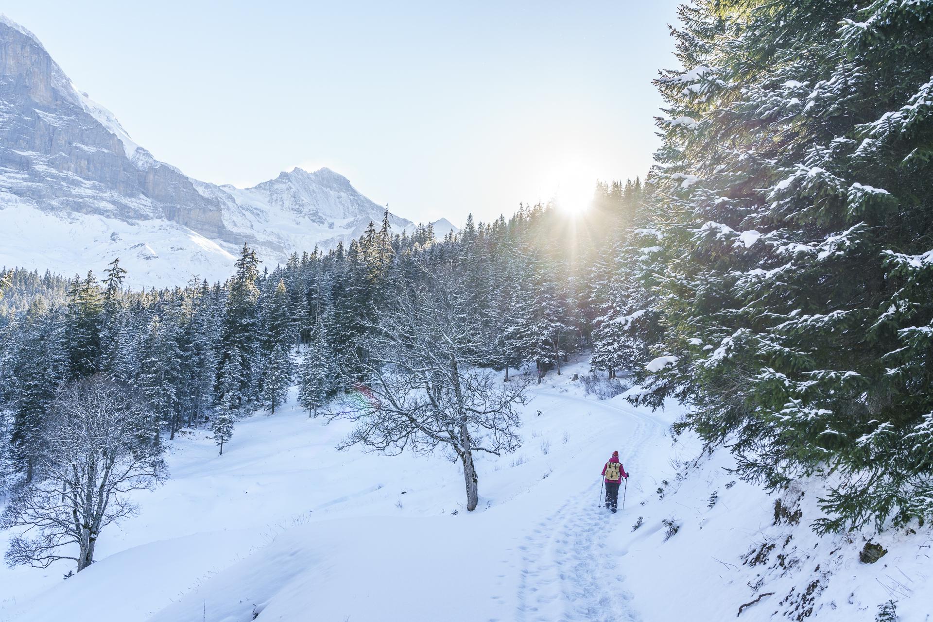 Schneeschuhtourte Eiger Trail Grindelwald