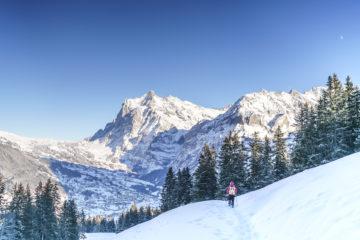 Schneeschuhwanderung in Grindelwald - Traumtag am Eiger Trail