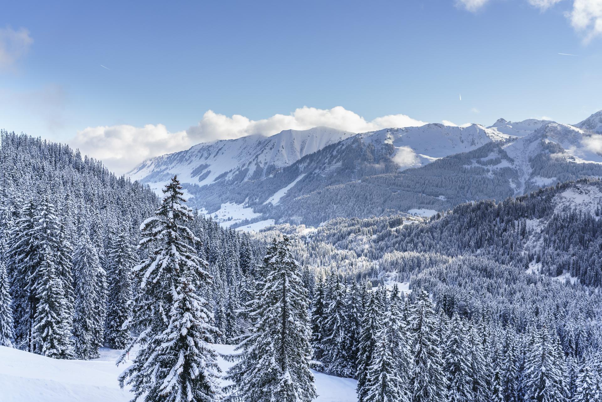 Kleinwalsertal Winterstimmung