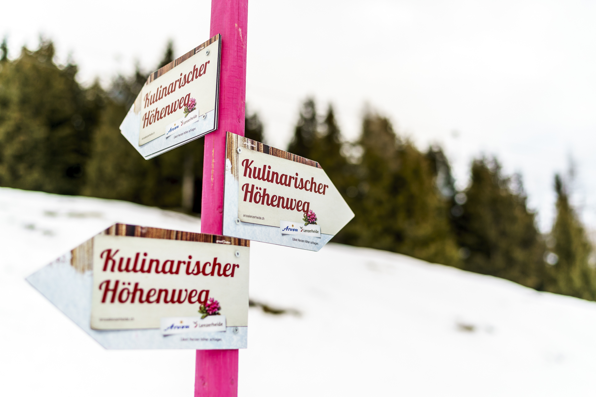 Kulinarischer Höhenweg Lenzerheide