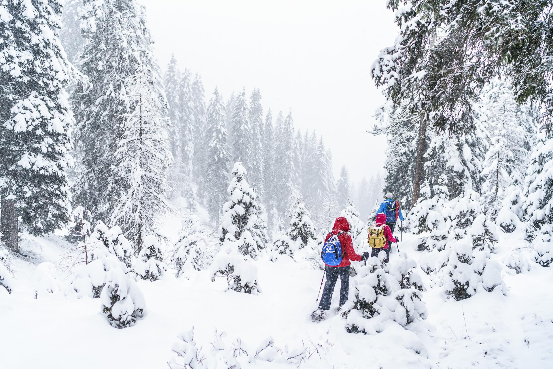 Trentino Winter Schneeschuhlaufen