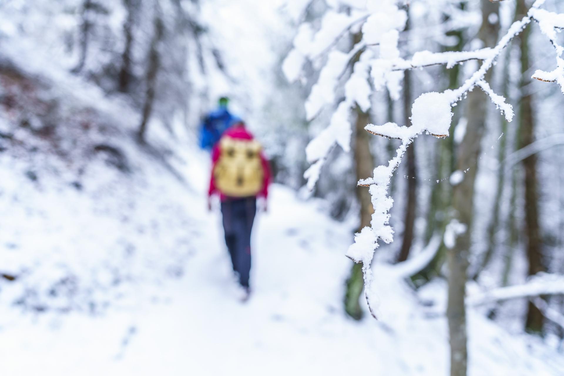 Winterwandern Valsinella