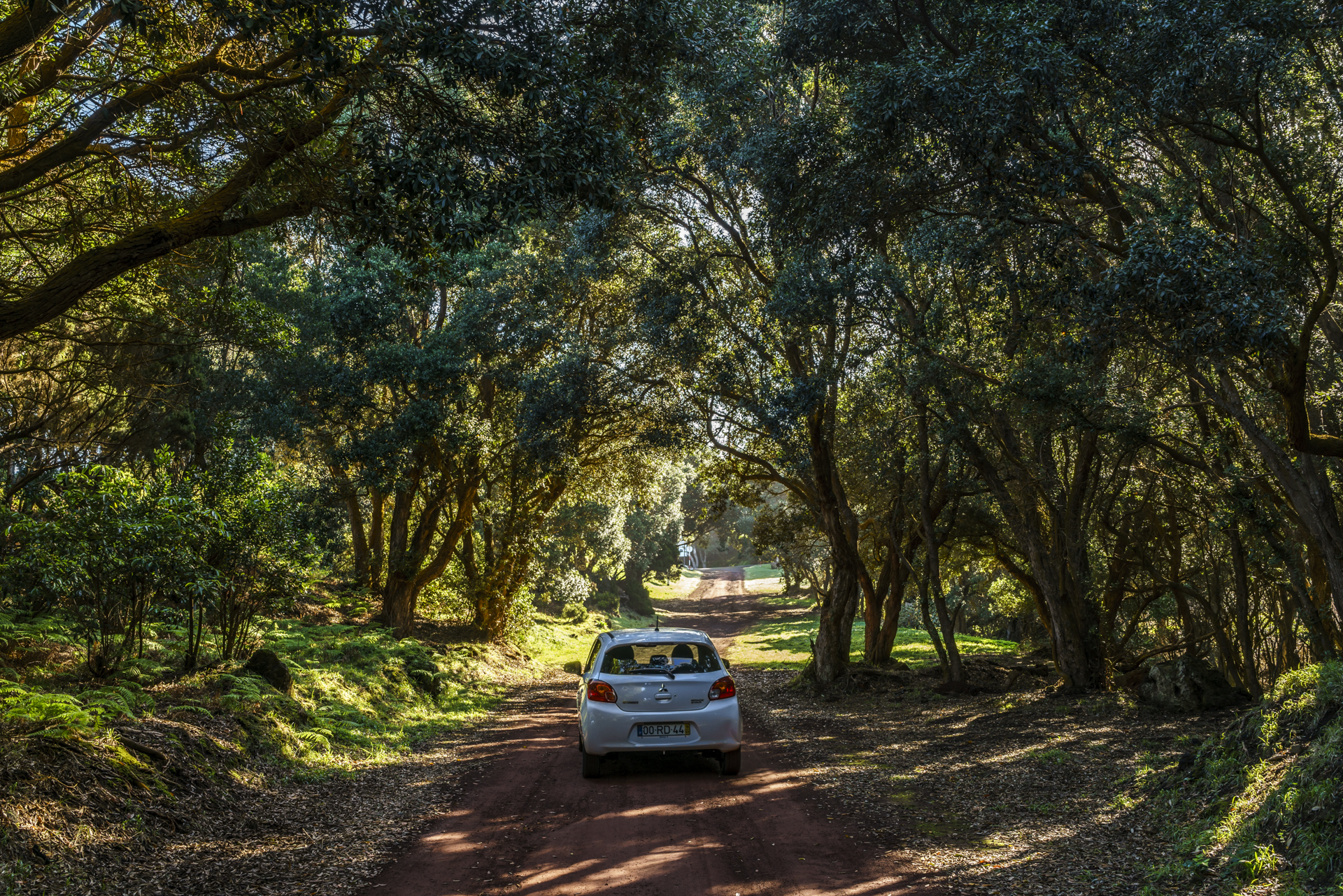 Reserva Florestal de Recreio da Serrata