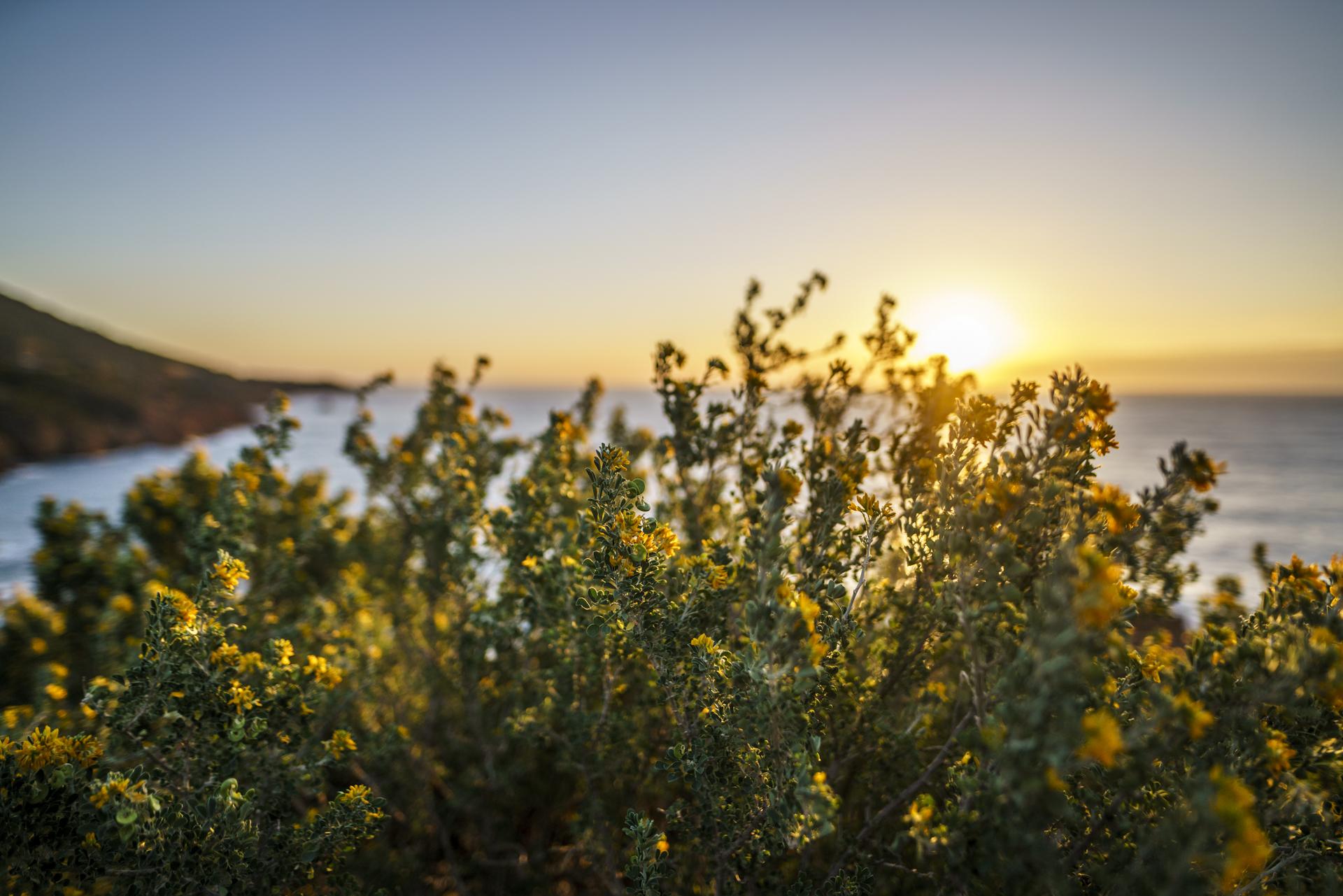 Südfrankreich Sonnenaufgang