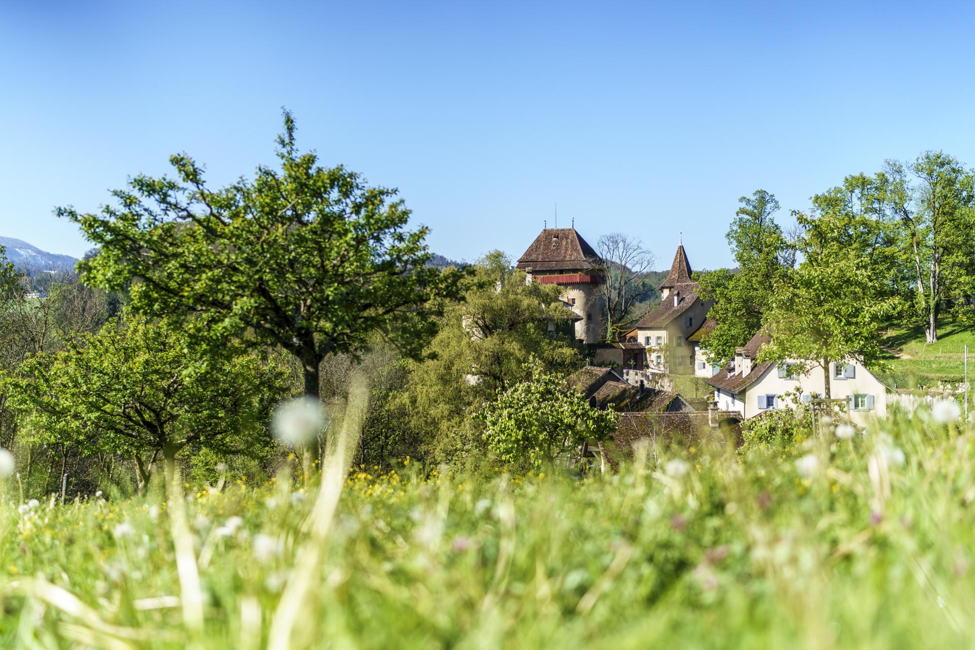 Schloss Wildenstein Bubendorf
