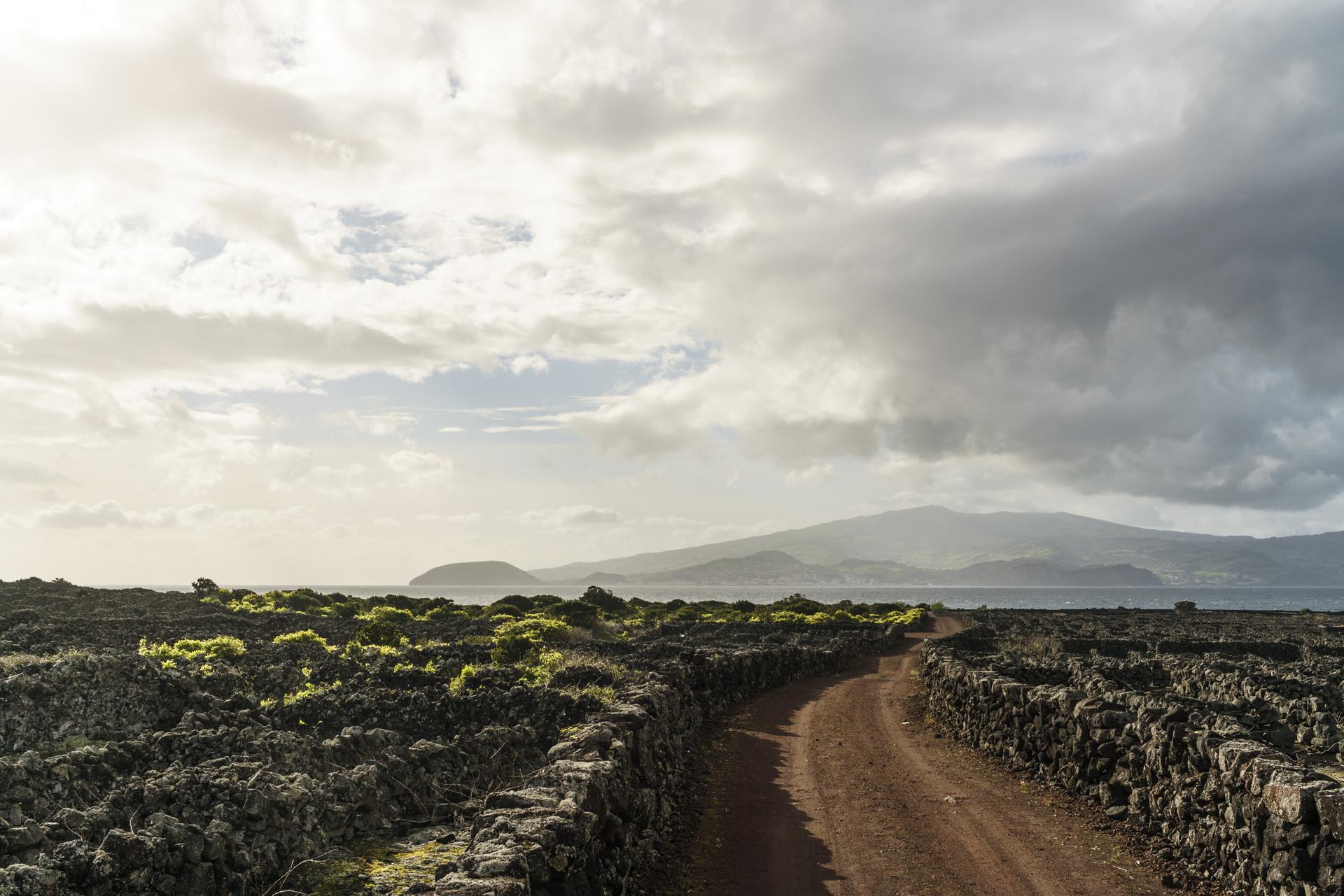 Velha Unesco Weinanbaugebiet Pico