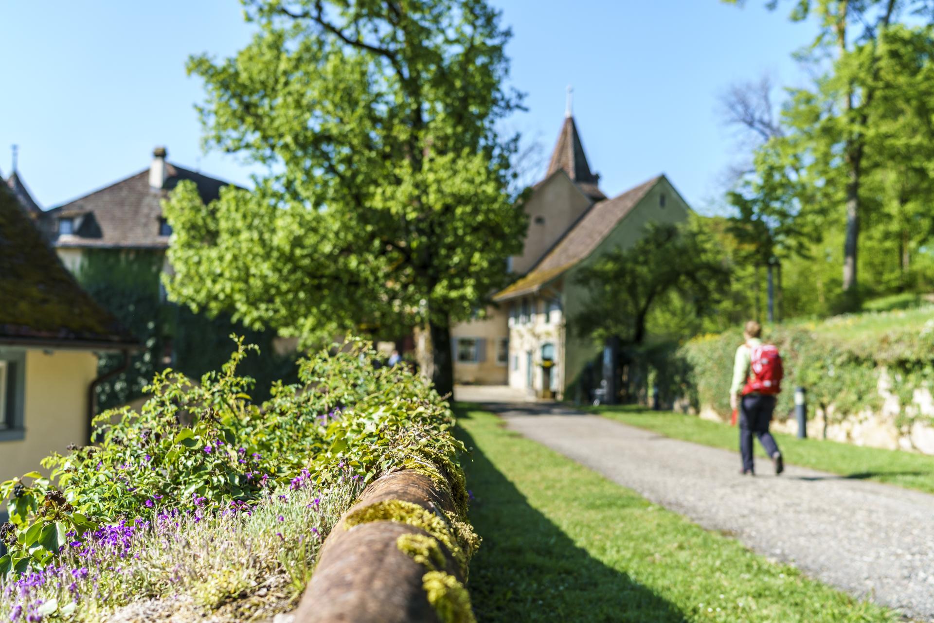 Wanderung Schloss Wildenstein Baselland