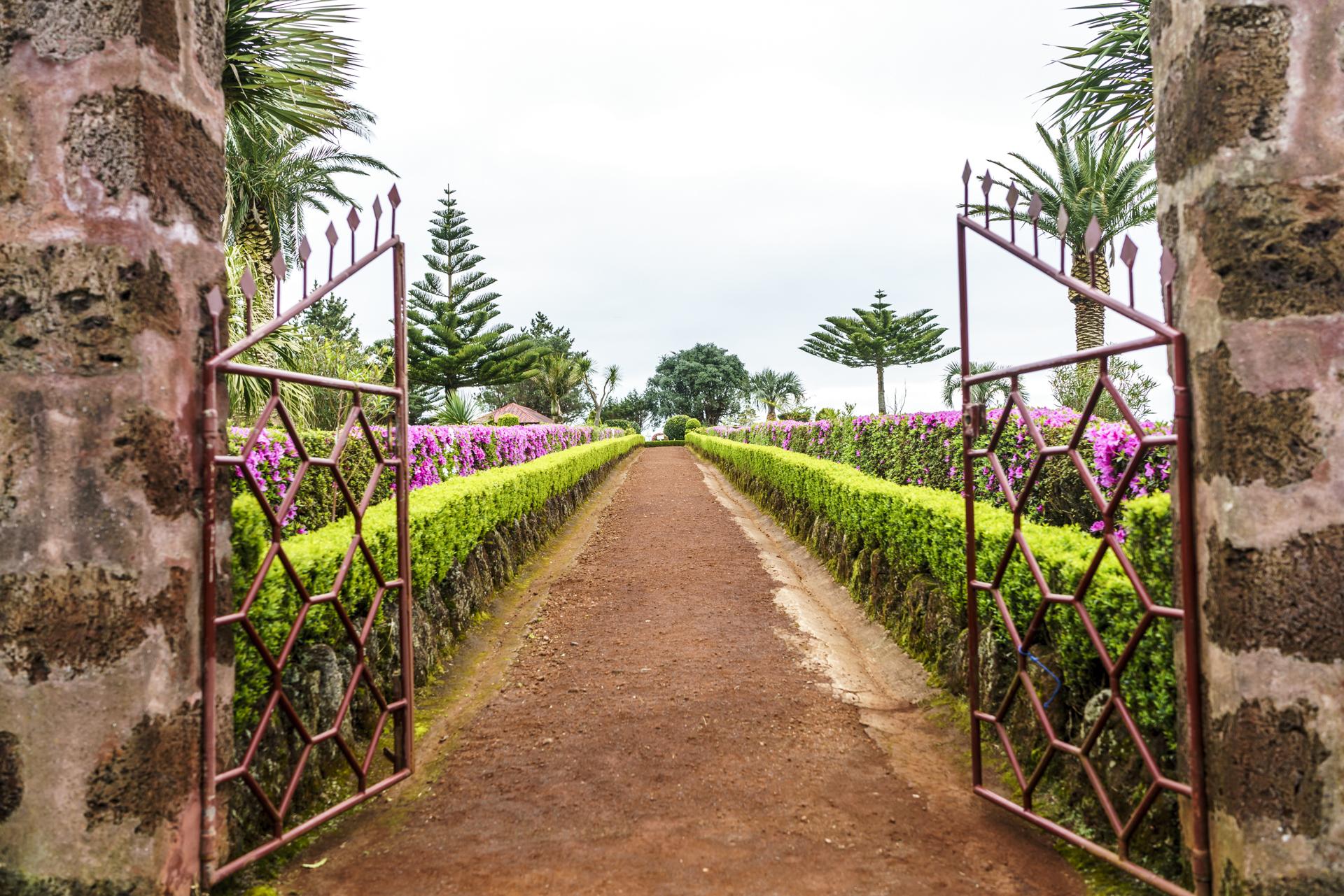 Azoren Grüne Insel