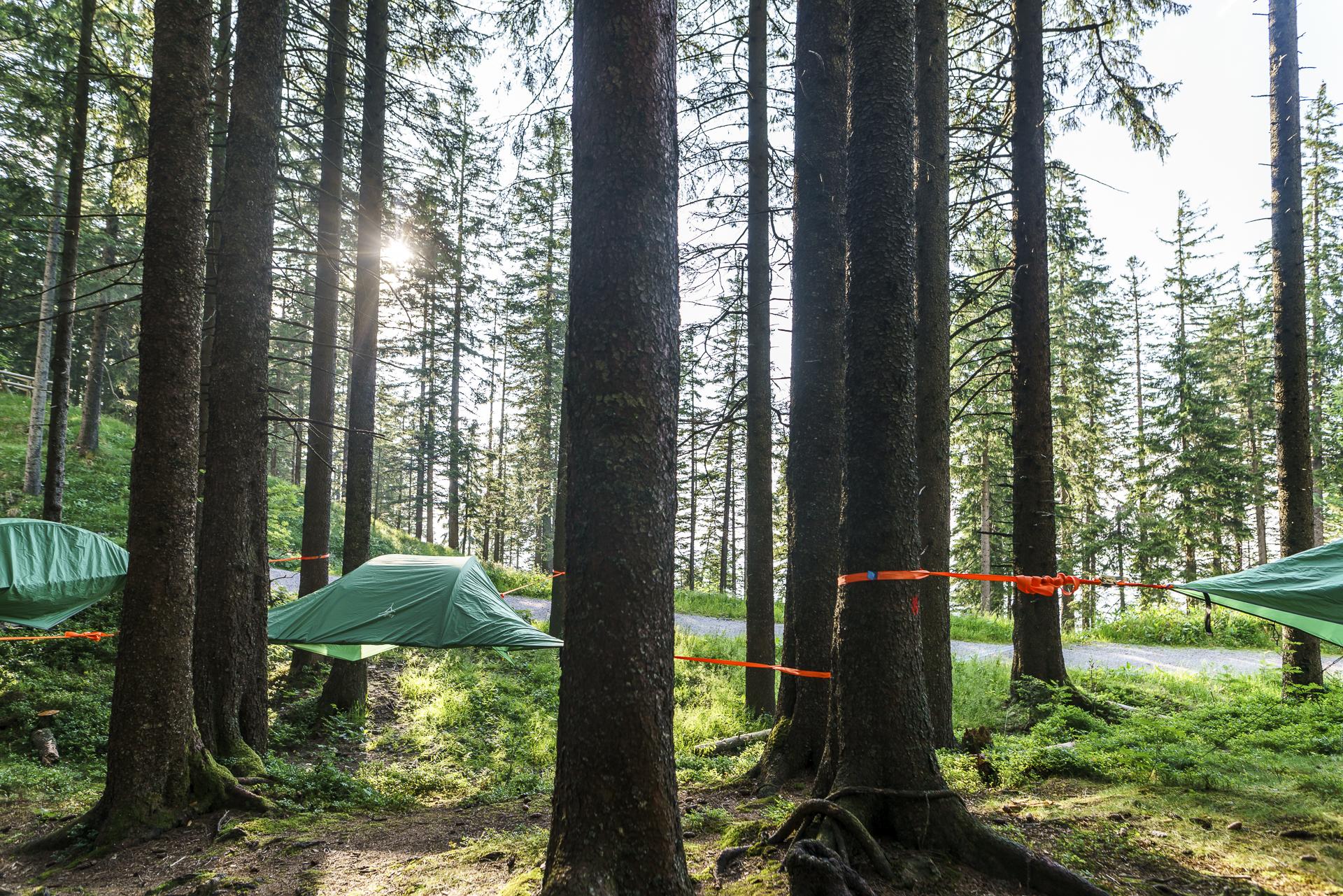 Tree Tents Fränkmüntegg Pilatus