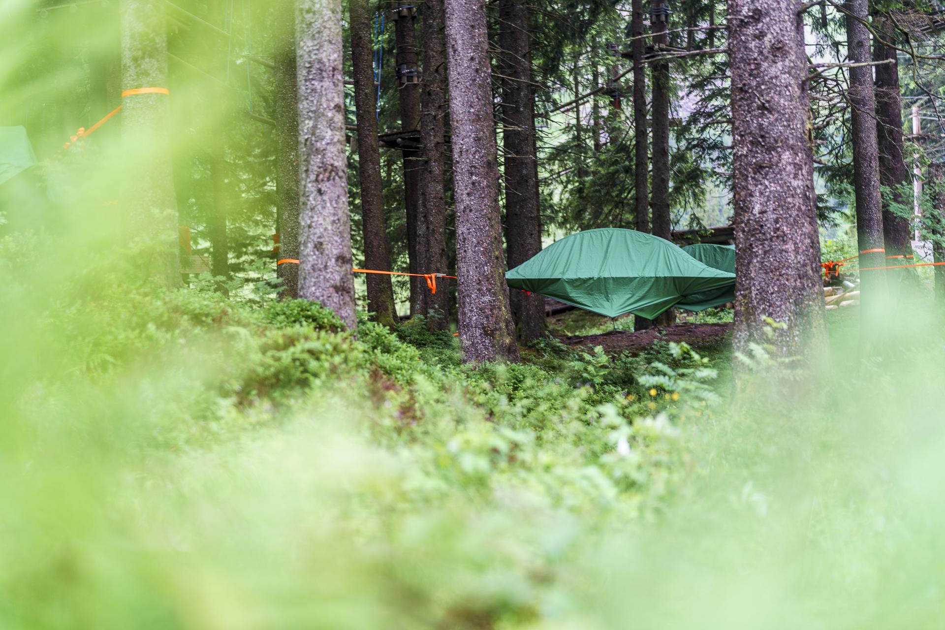 Tree Tent Baumzelte Pilatus