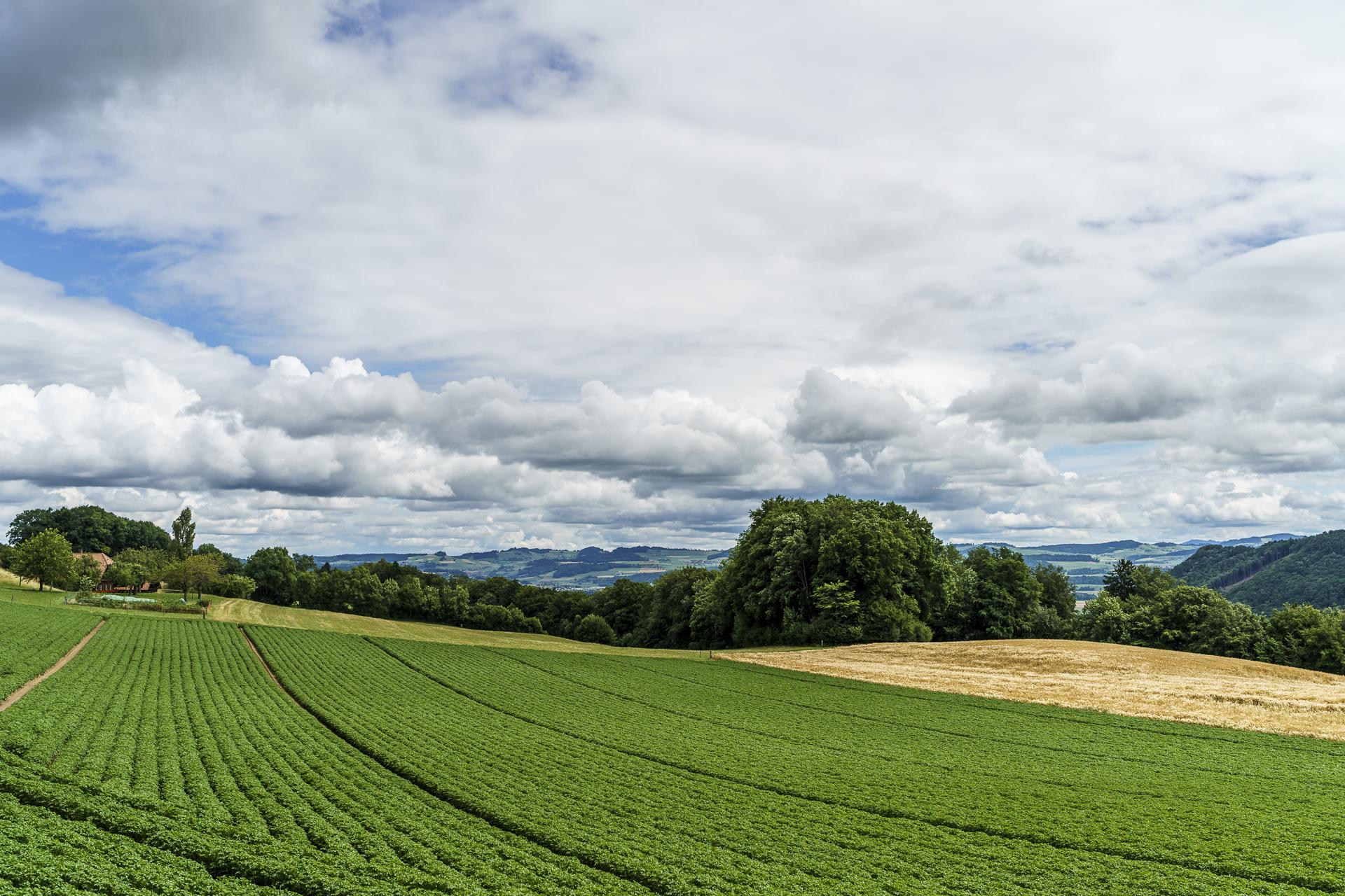 Gürbetal Landschaft