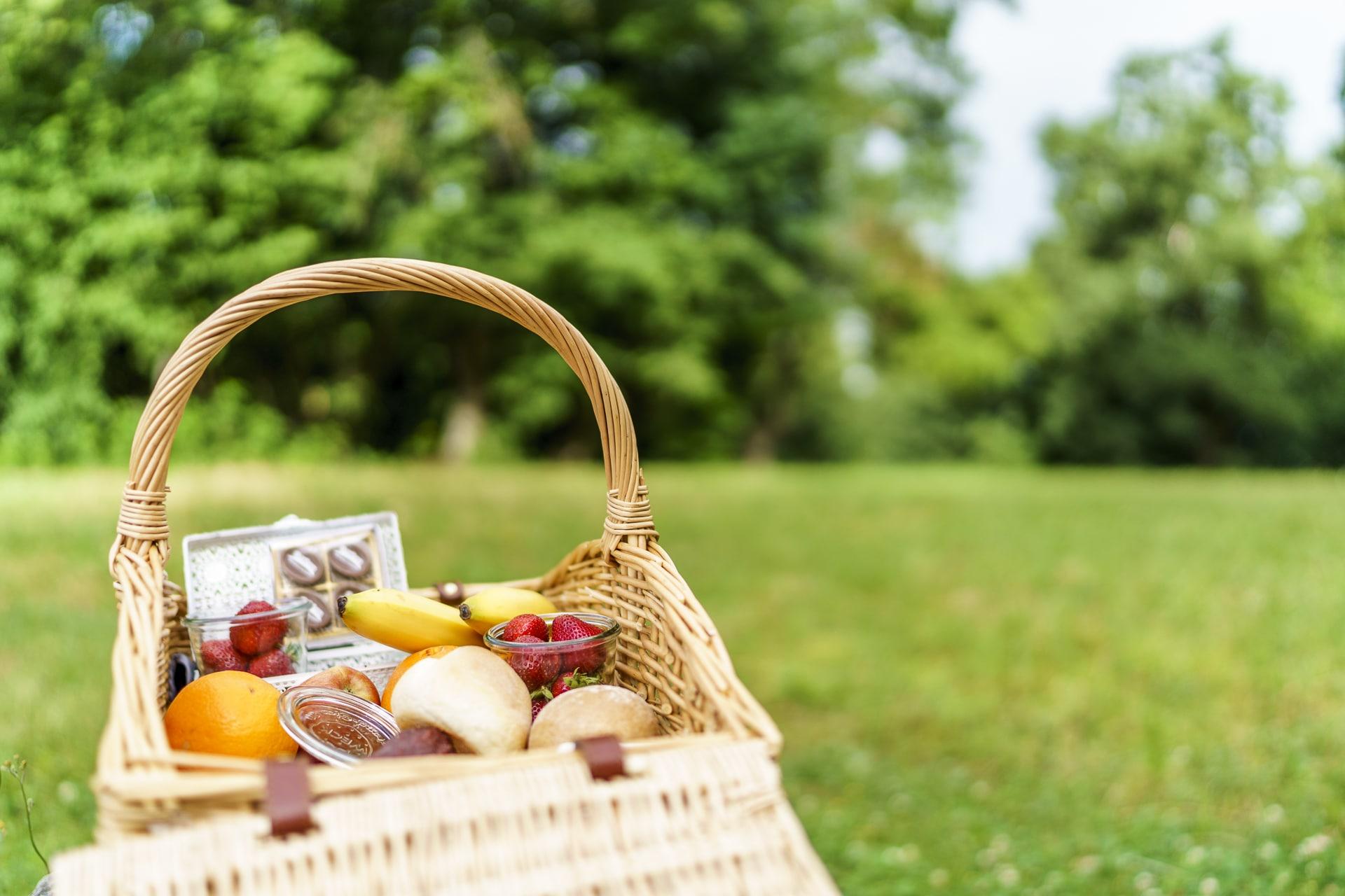 Gurten Picknick im Grünen