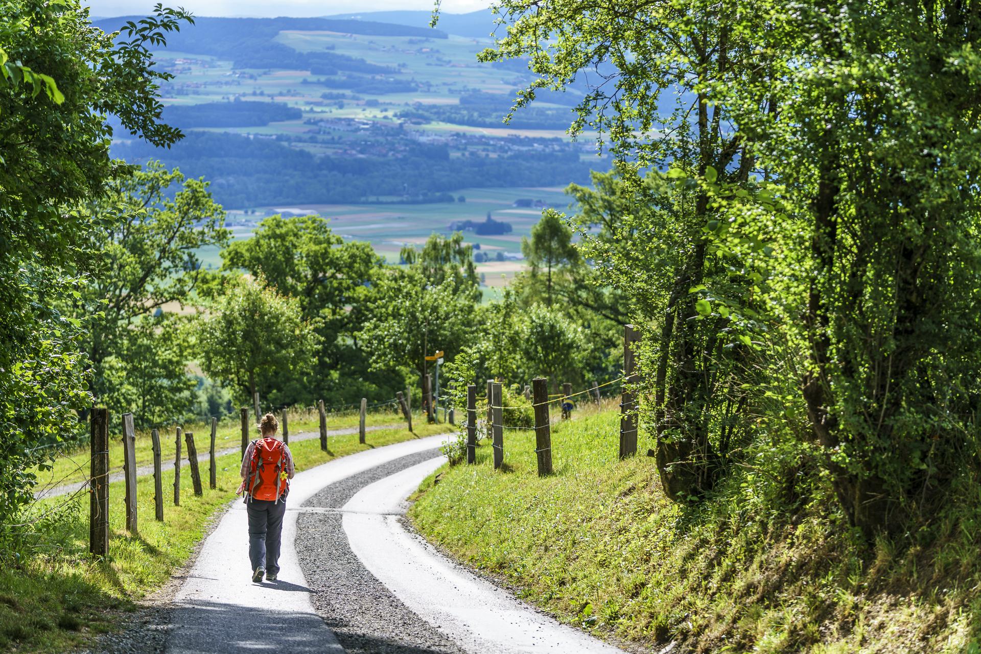 Gurten Wanderweg