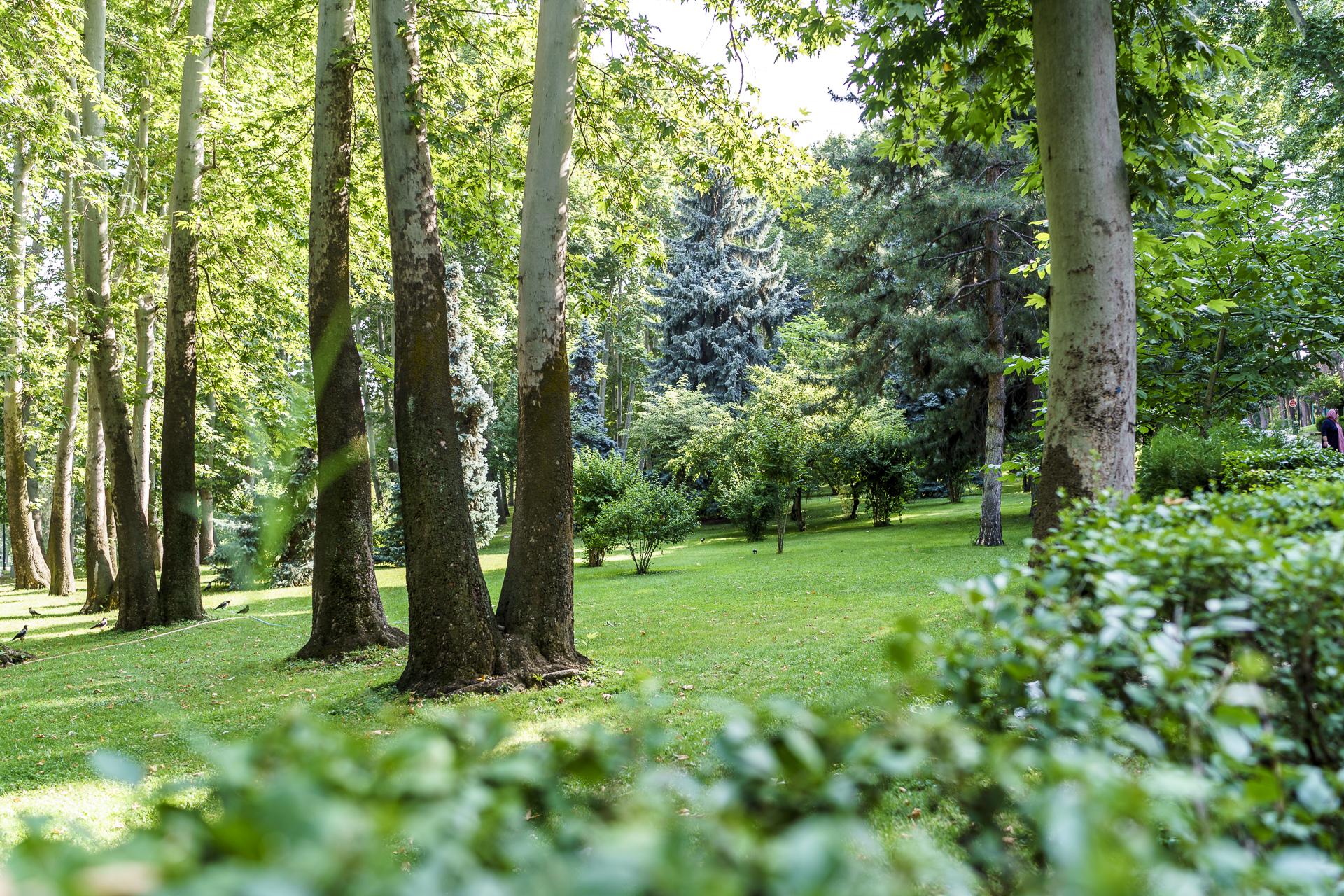 Saadabad Palastanlage grüne Oase