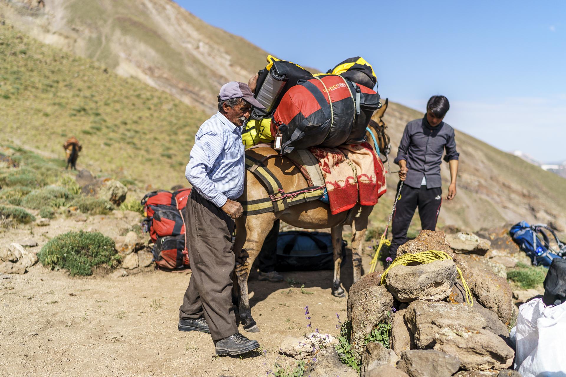 Trekking Pferdeführer Iran