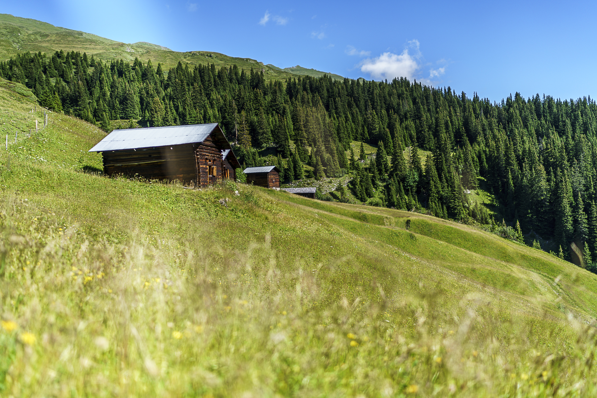 Walserweg Safiental Wandern