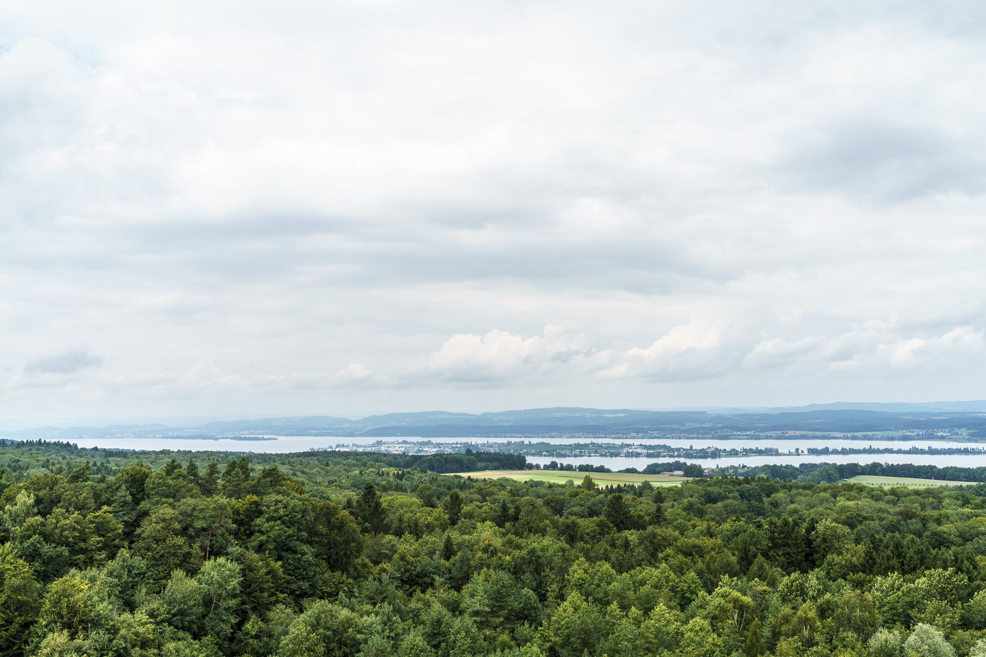 Aussicht Napoleonturm Wäldi