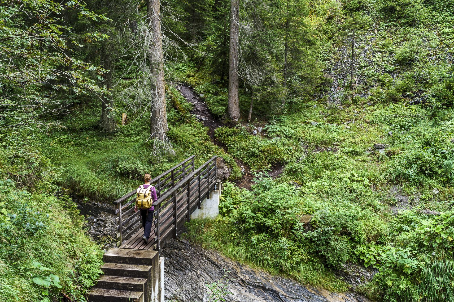 Flims Wasserweg Brücken