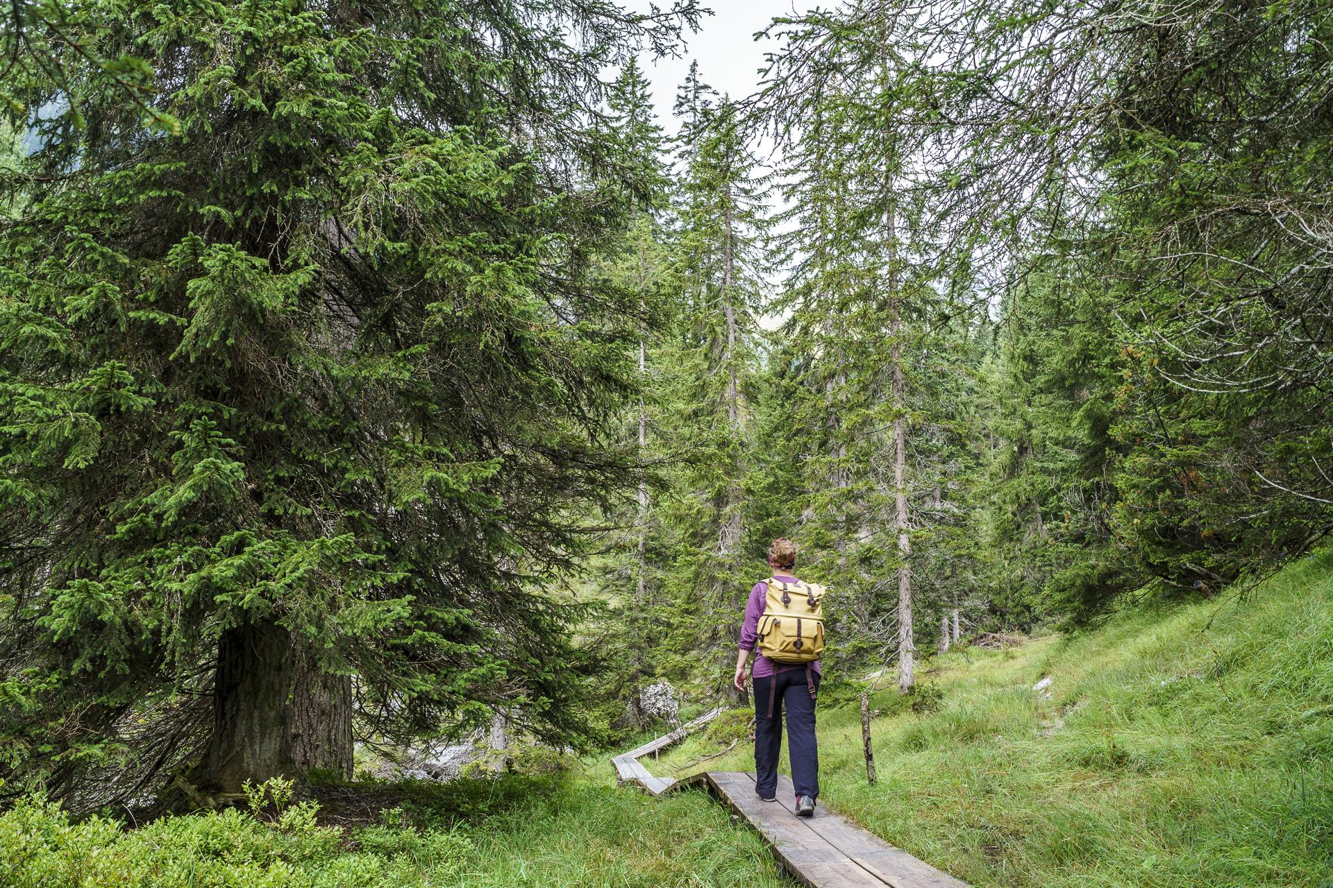 Flims Wasserweg Wanderung
