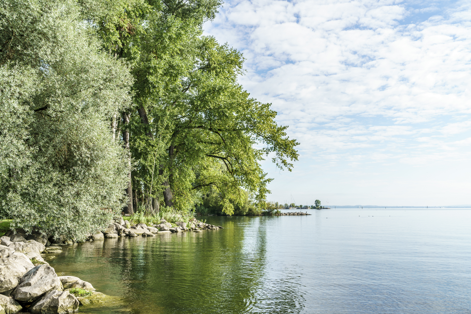 Salmsach Morgenstimmung Bodensee Ausflugstipps