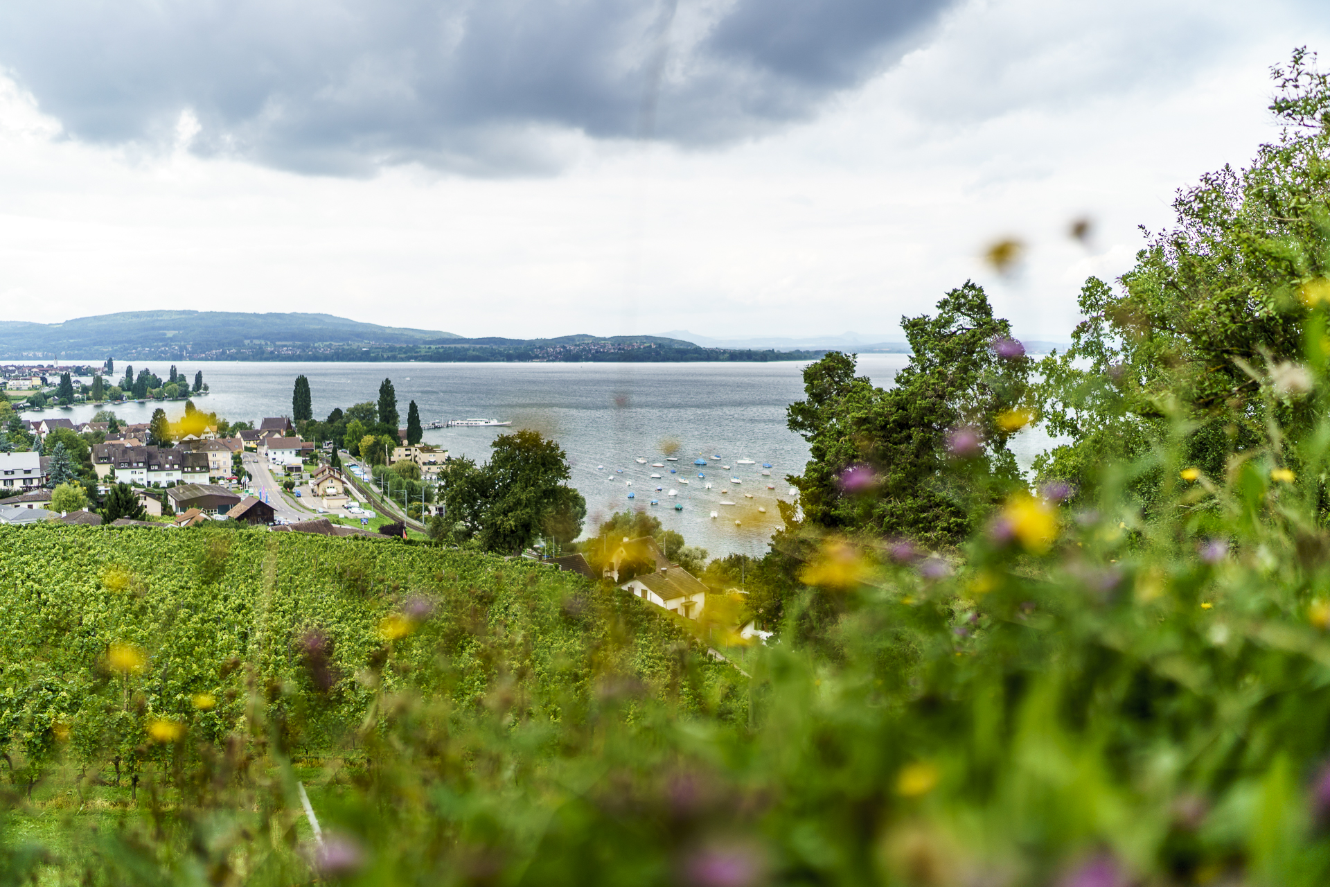 Schloss Arenenberg Aussicht