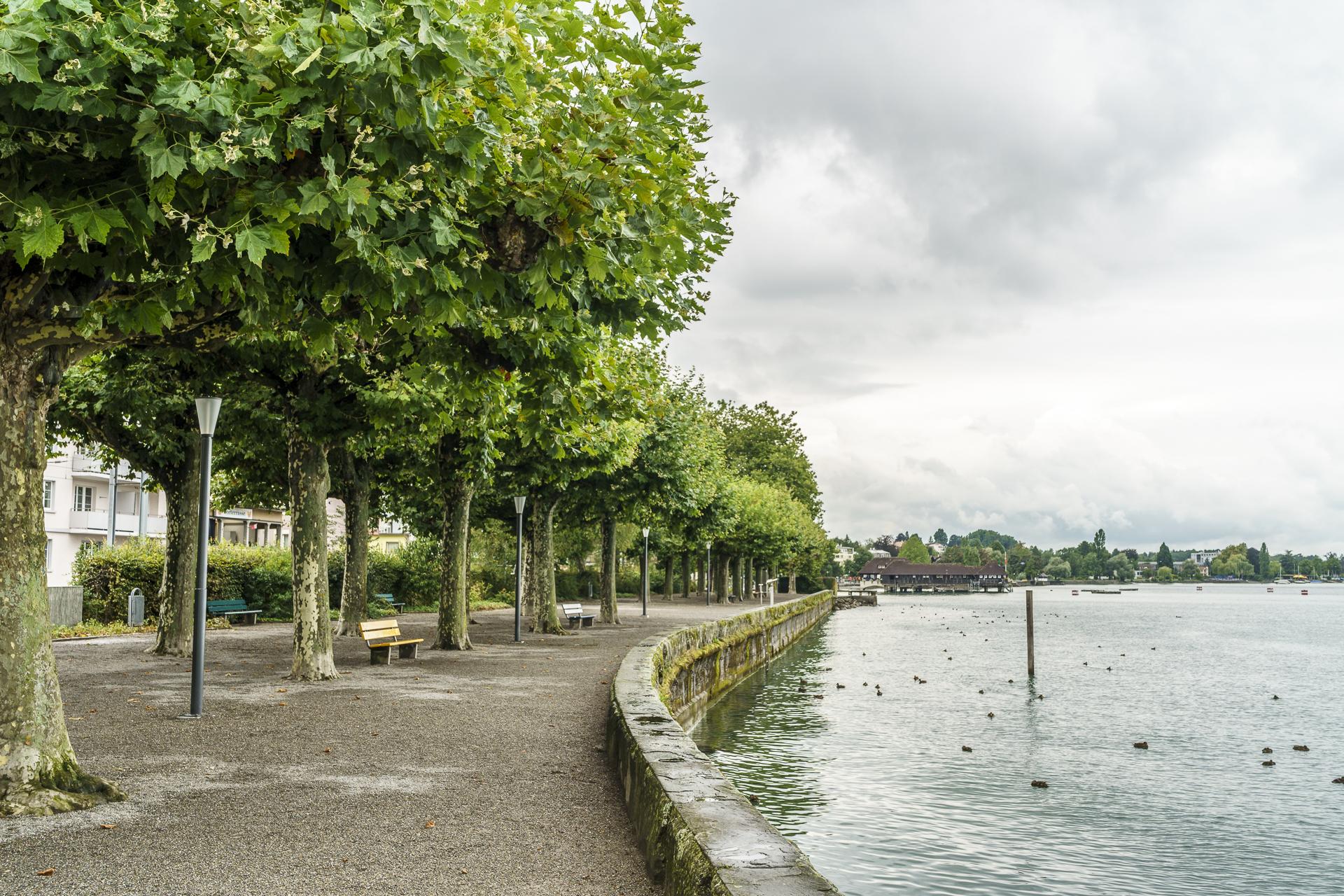 Uferpromenade Rorschach