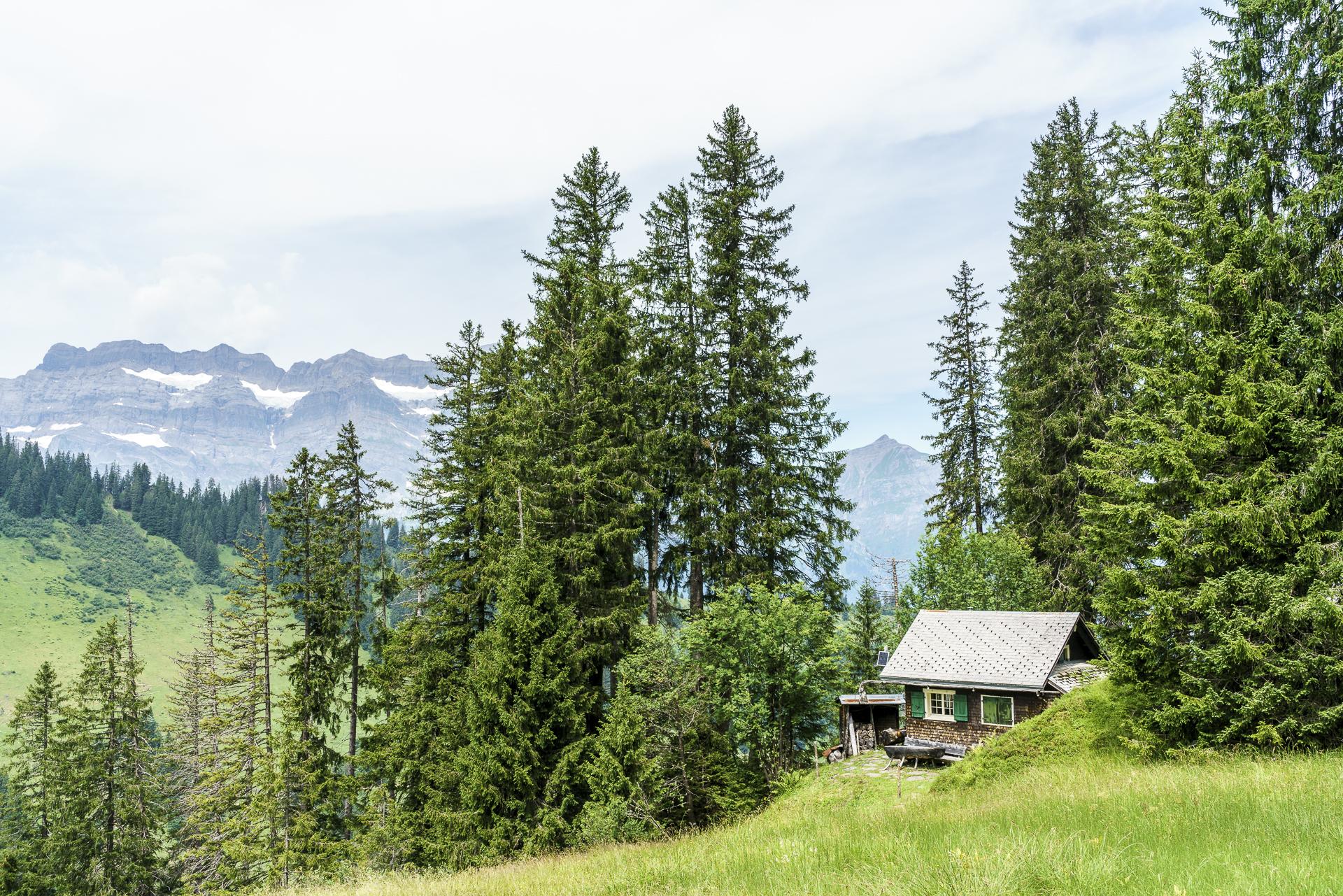 Vorderer Auernwald Glarnerland