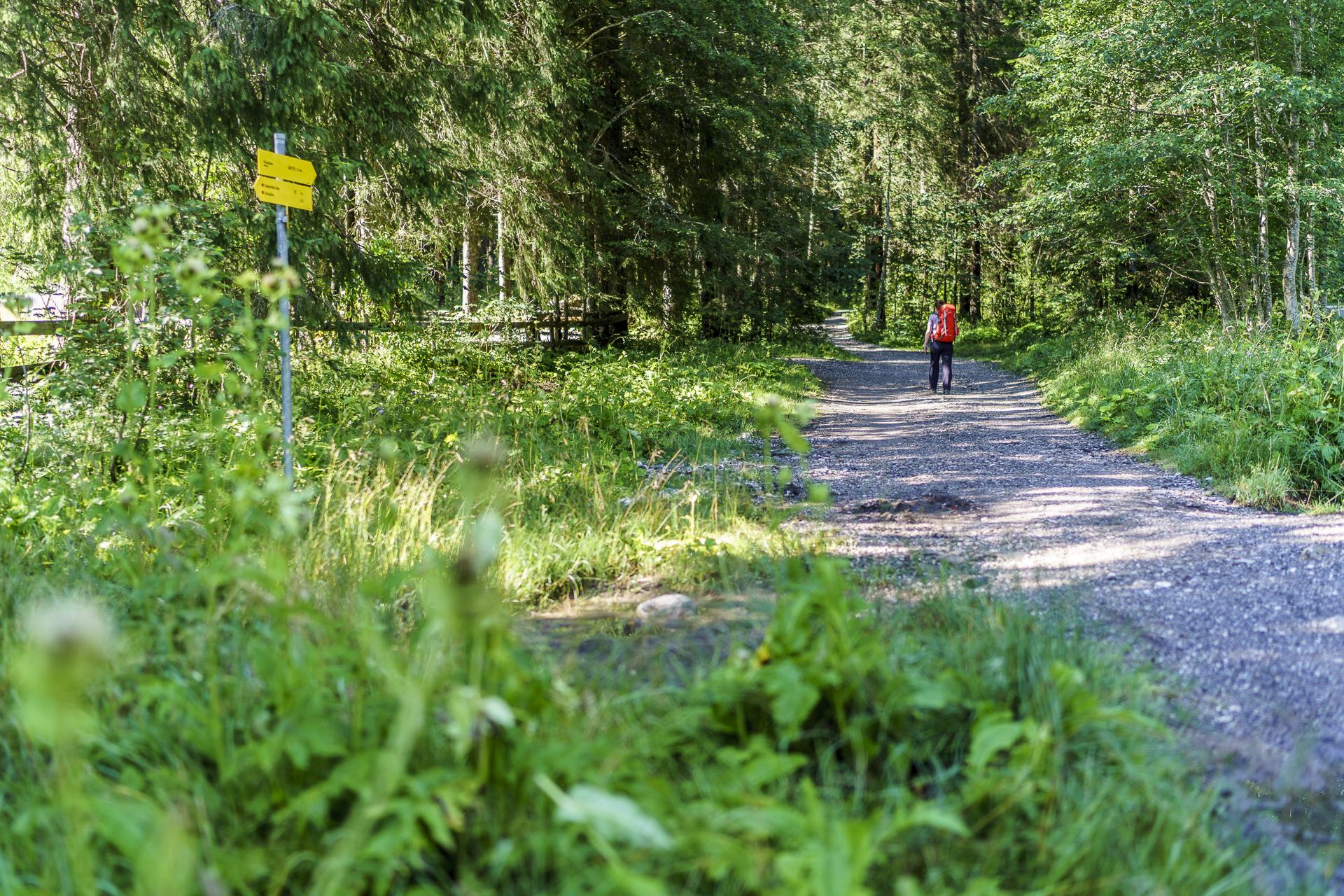 Wanderweg Tannheim Vilsalpsee