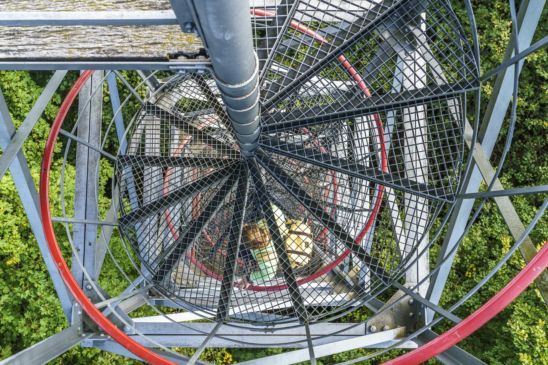 Aufstieg zum Schleitheimer Randenturm