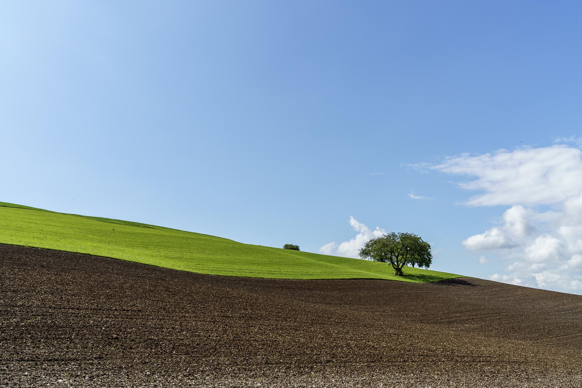 Schaffhausen Landschaft