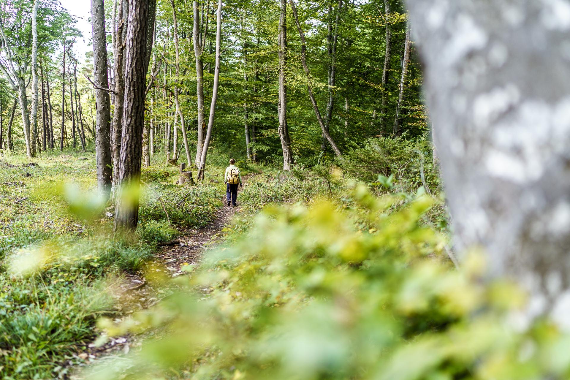 Wanderung Merishaus Schleitheim