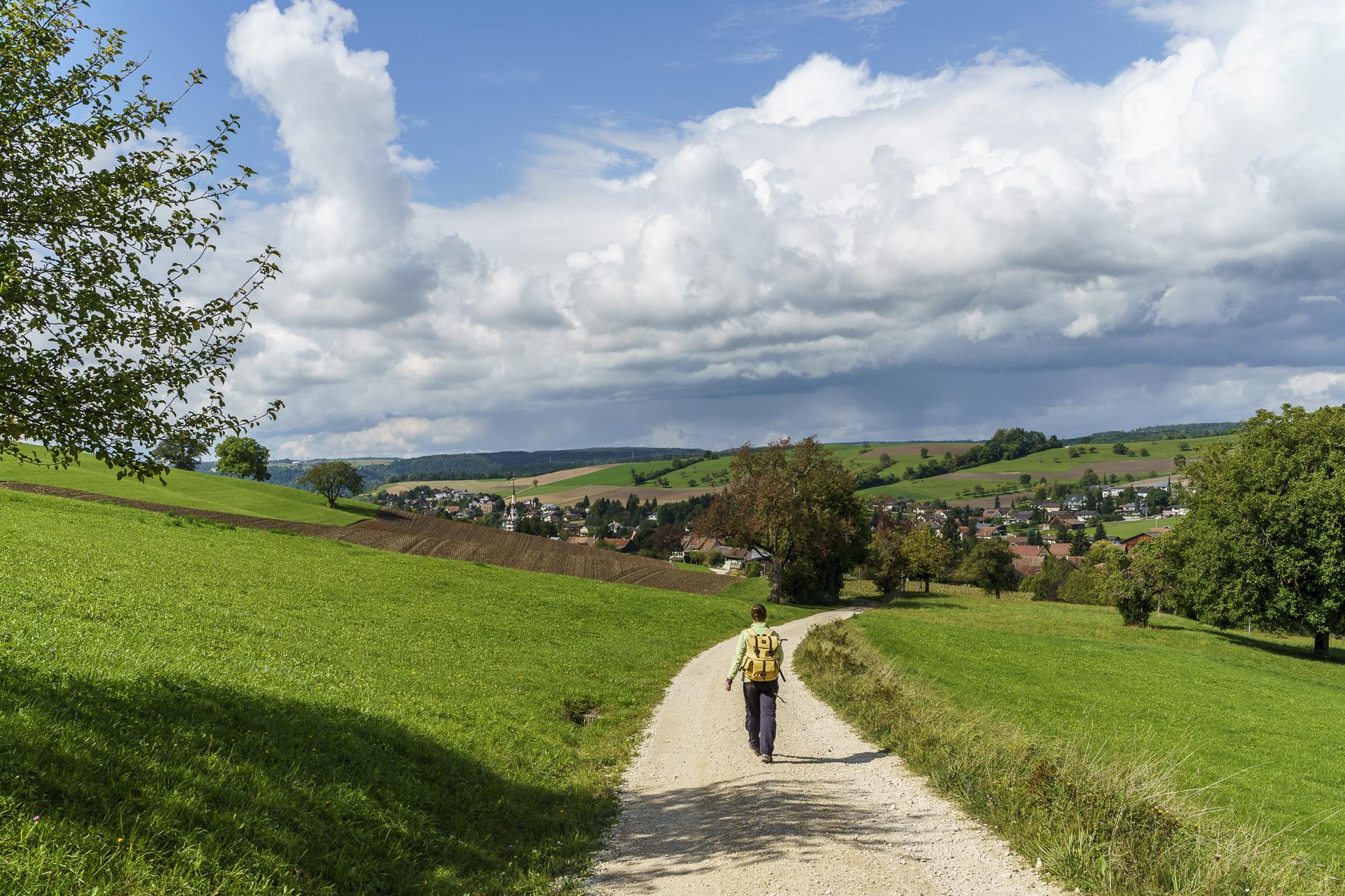 Weg nach Schleitheim