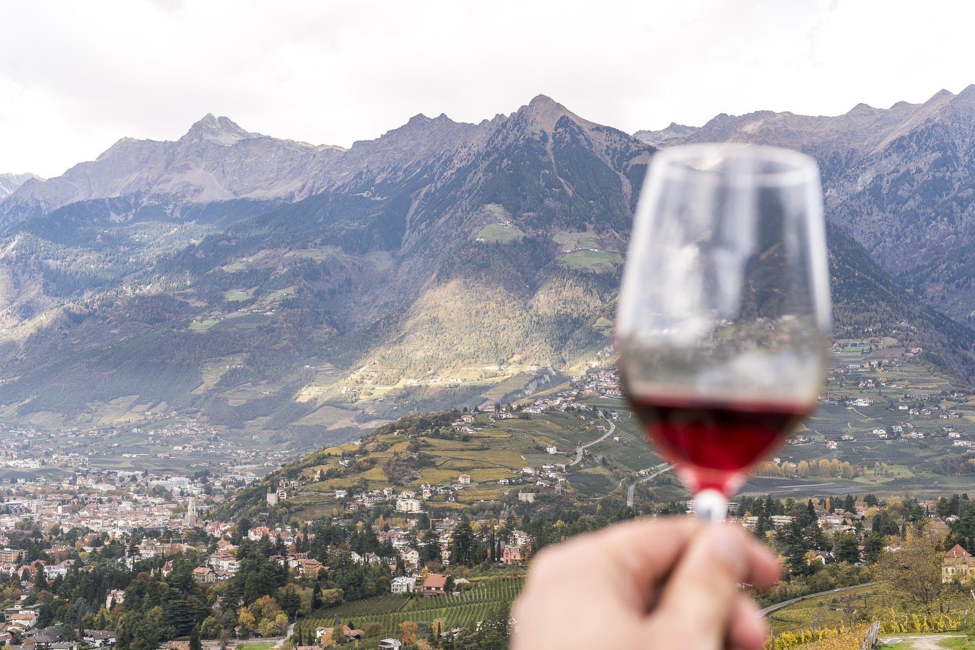 Bullitour Weinverkostung