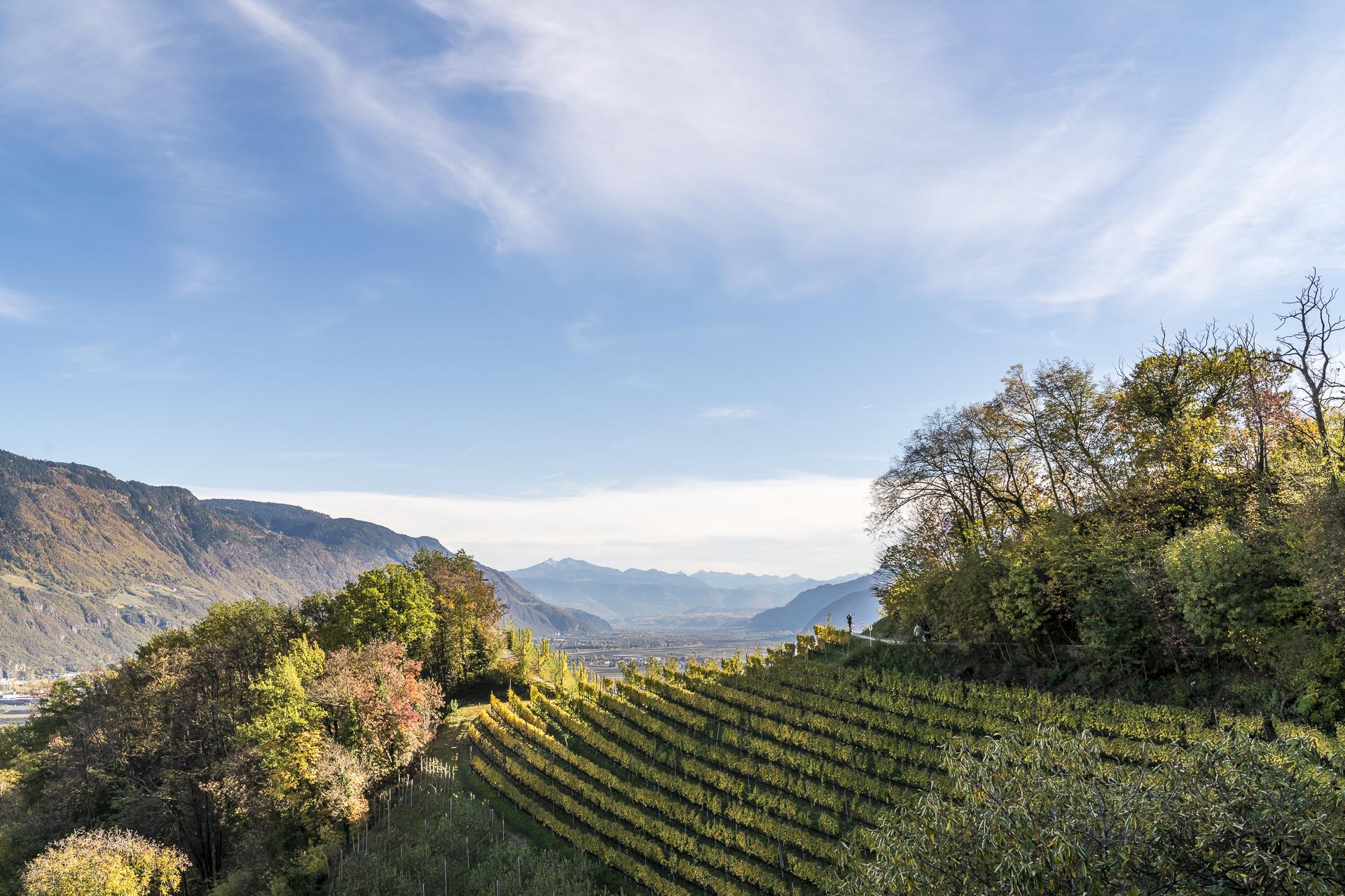Südtirol Meranerland