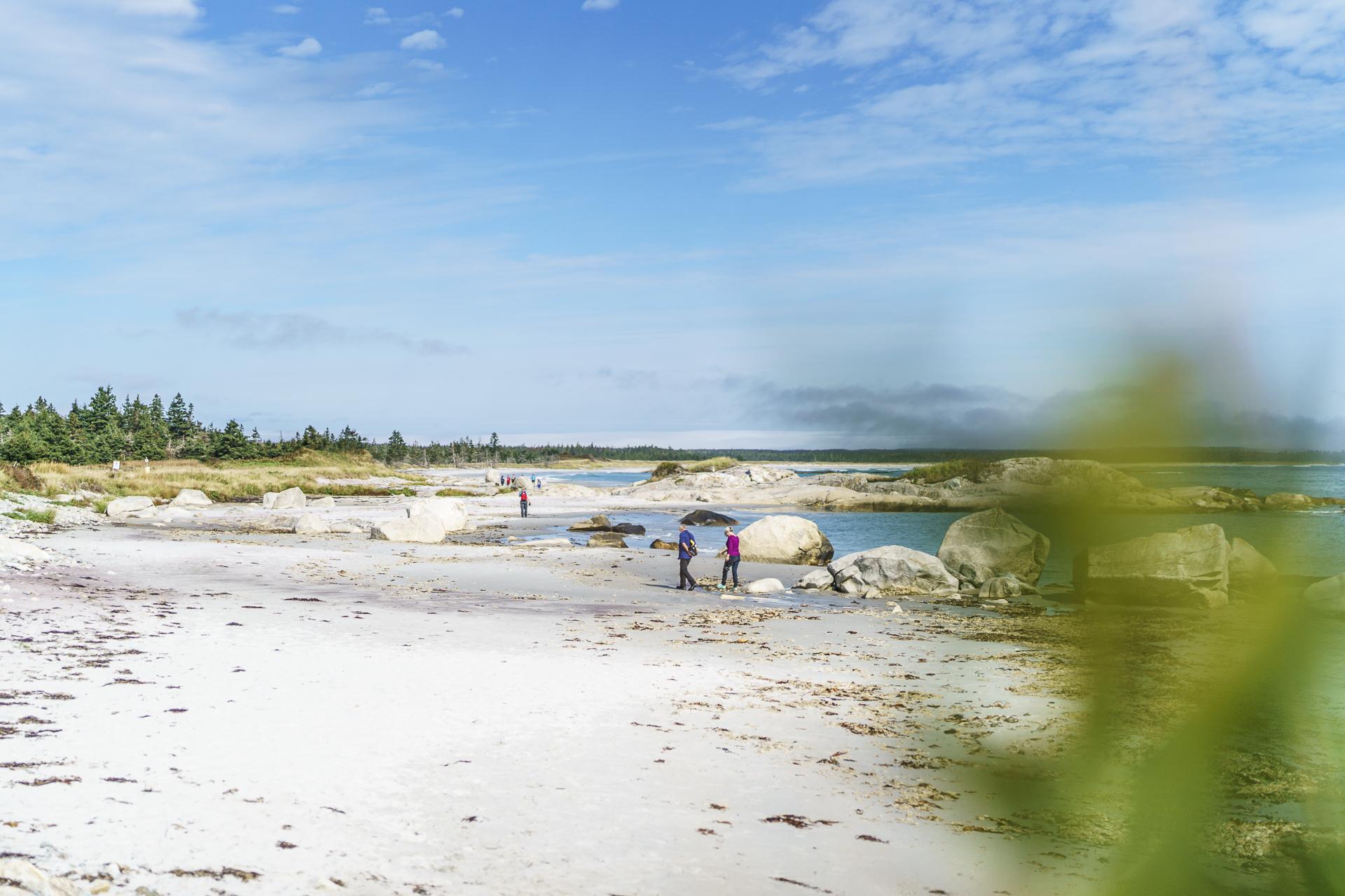 Kejimkujik National Park Beach