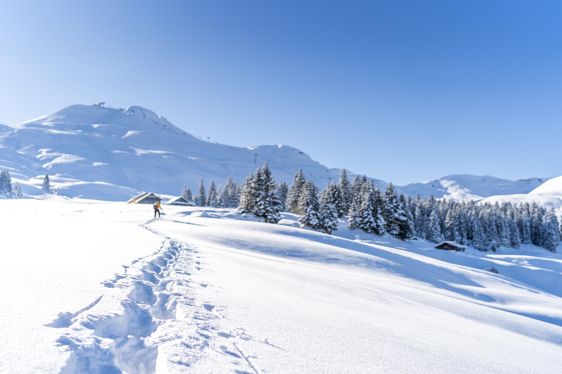 Schneeschuhtrail Waldhüttli Stoos