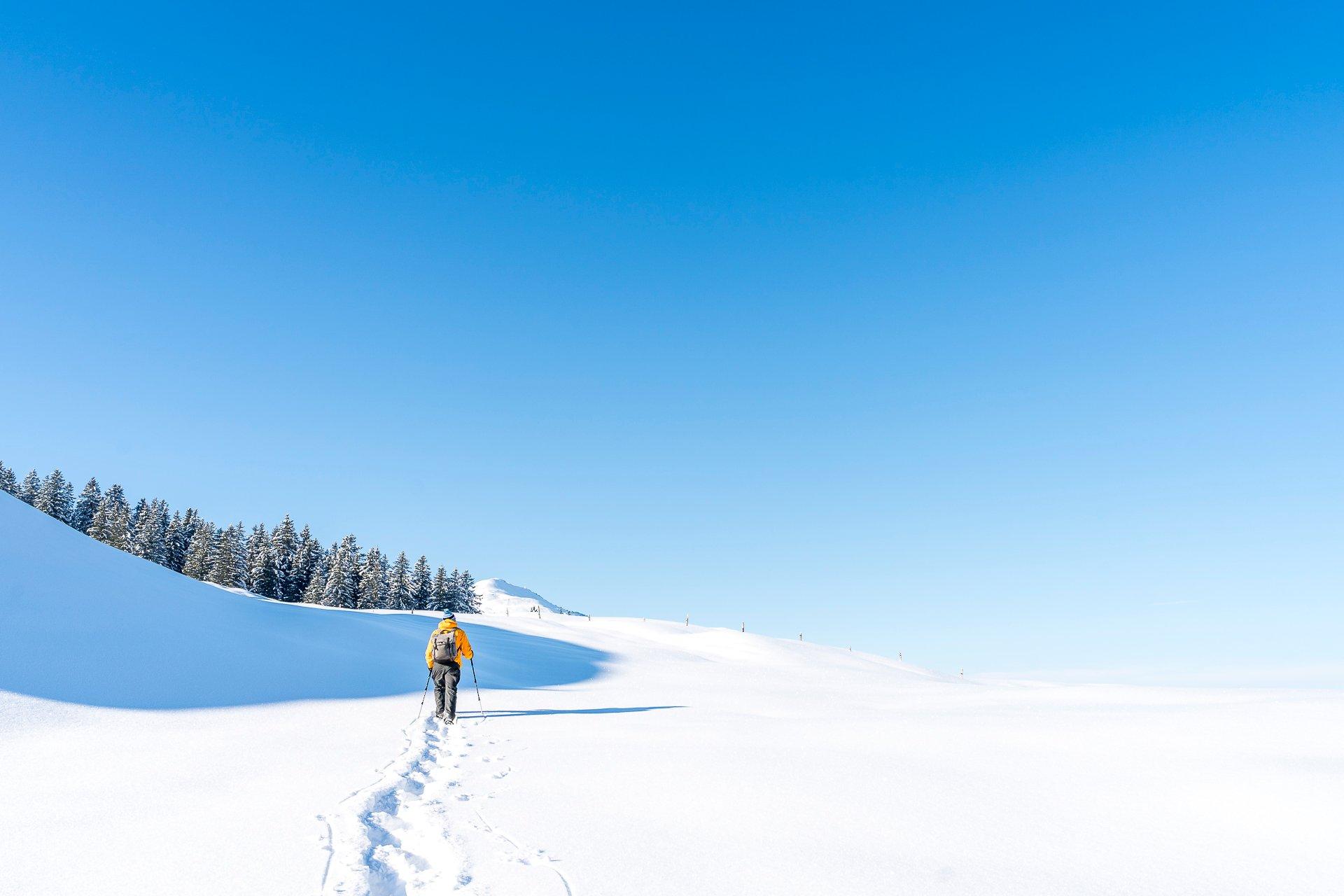 Waldhüttli Schneeschuhtrail Stoos